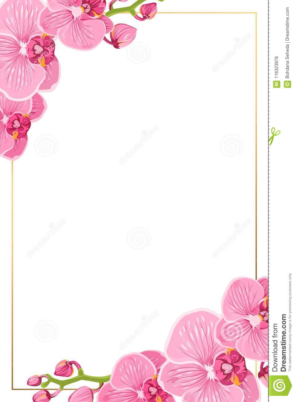 pink orchid flowers border frame template card stock illustration