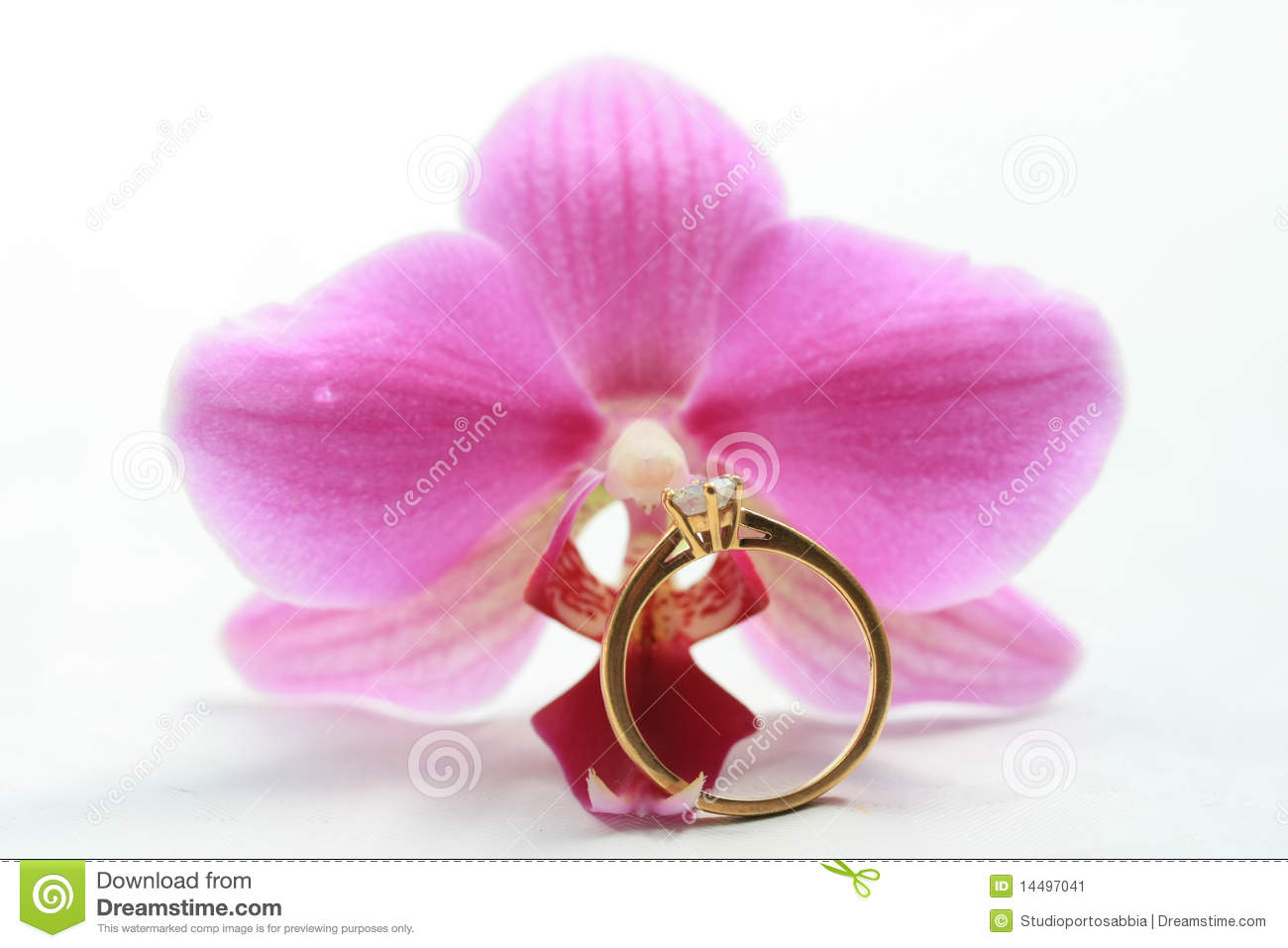 Pink Orchid And Solitaire Engagement Ring Stock Image - Image of ...