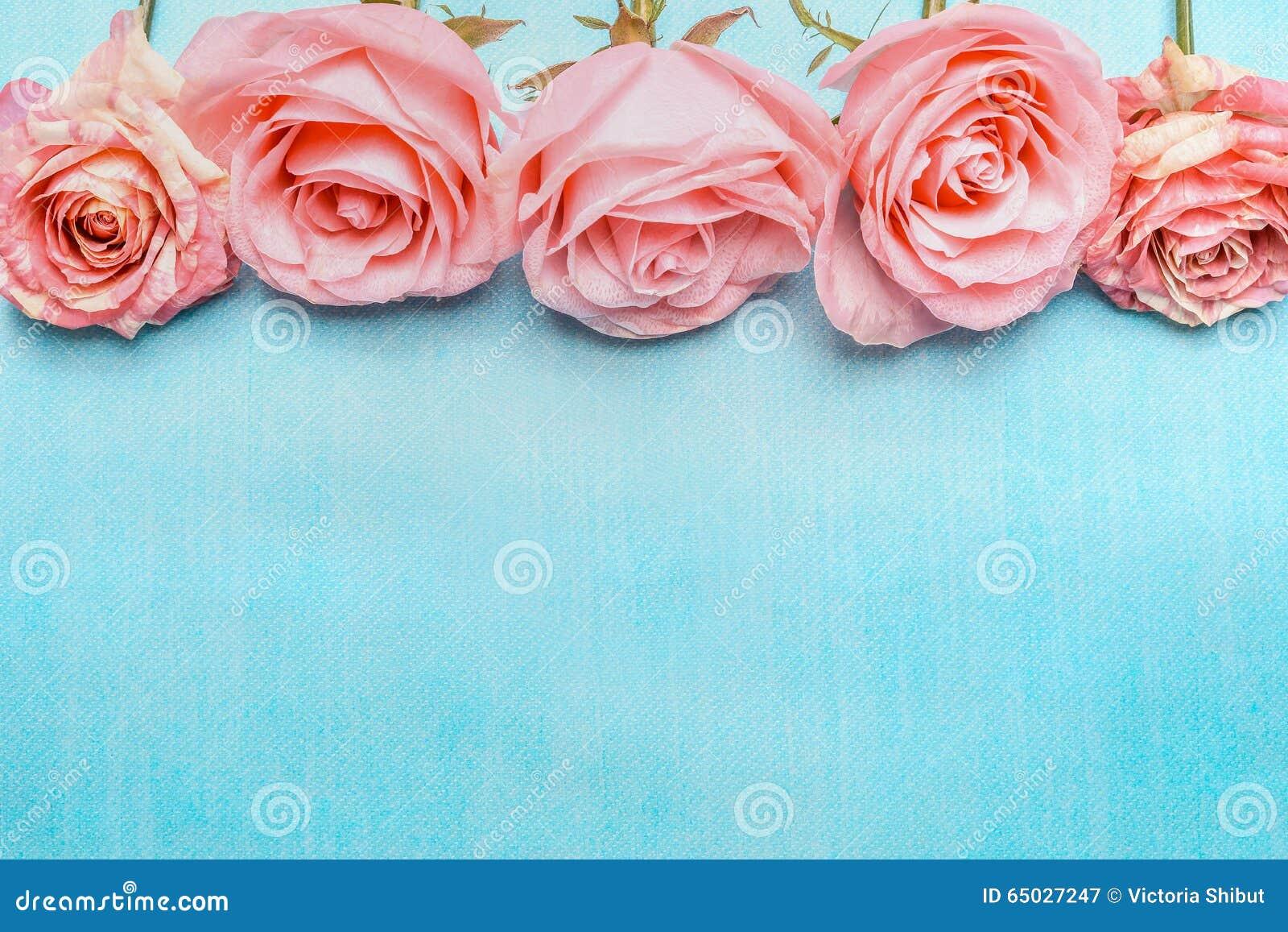 Pink pale roses border on blue background