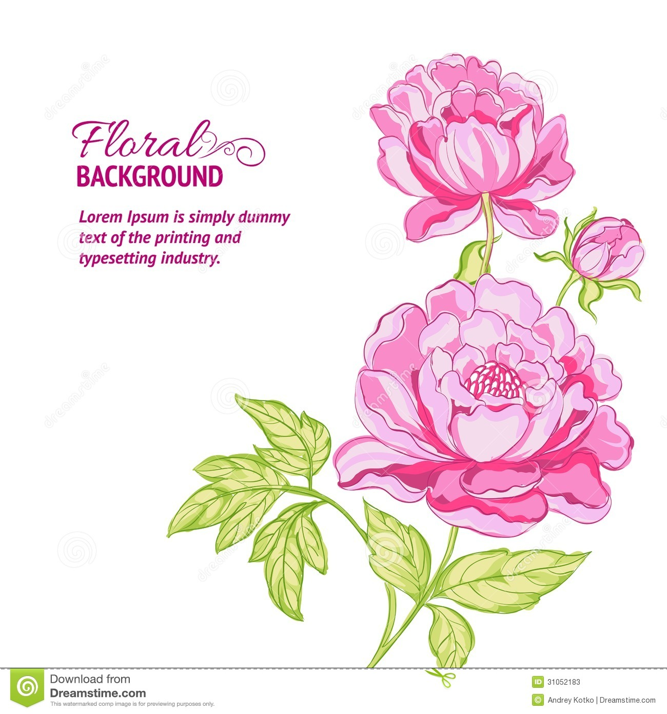 Pink Peonies Background With Sample Text Stock Vector - Image: 31052183