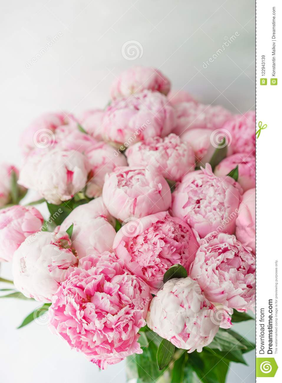 pink peonies . floral composition, daylight. wallpaper. lovely