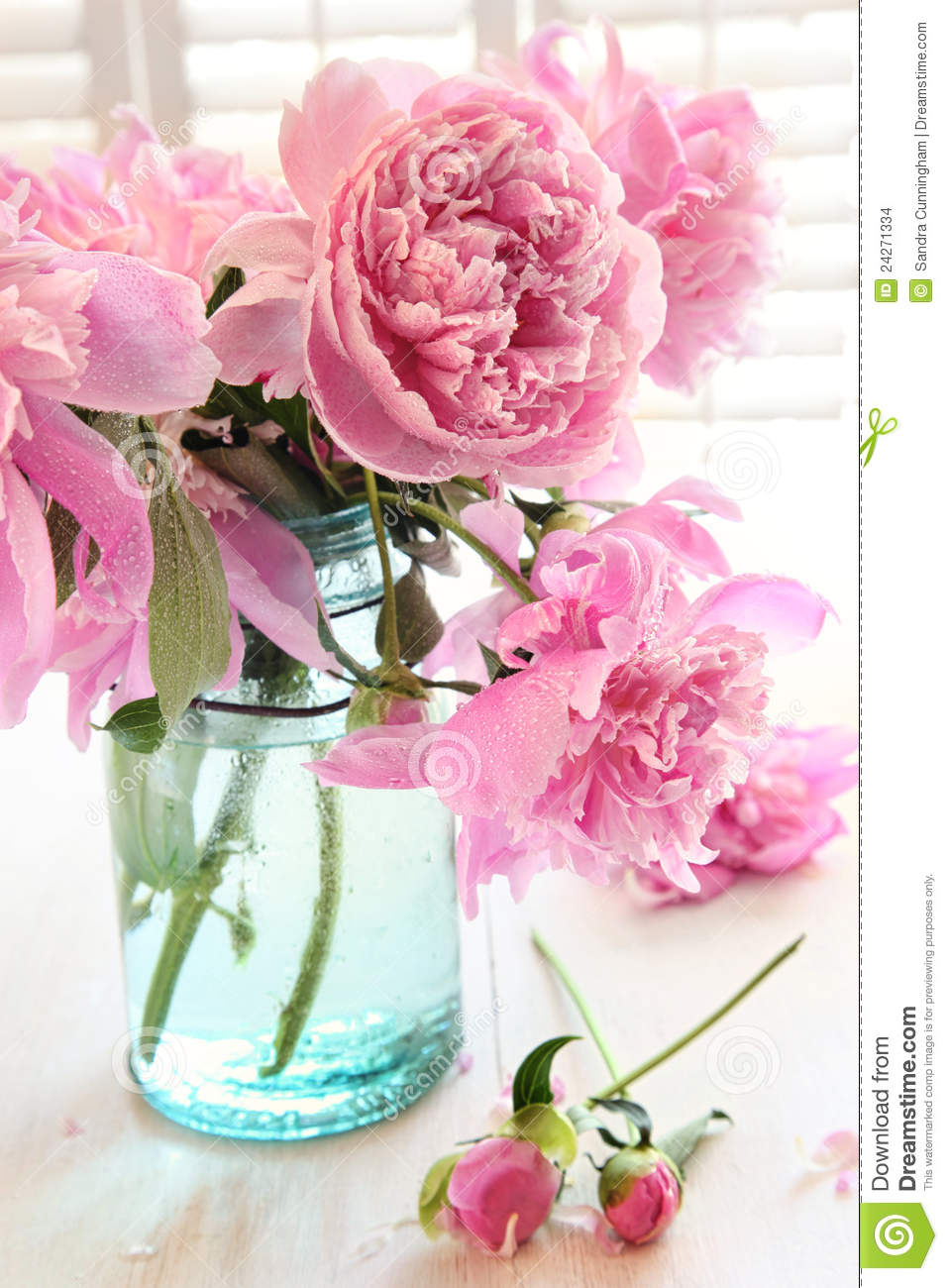 The Pink Peonies Pink Peonies In Glass Jar Stock Images  Image 24271334