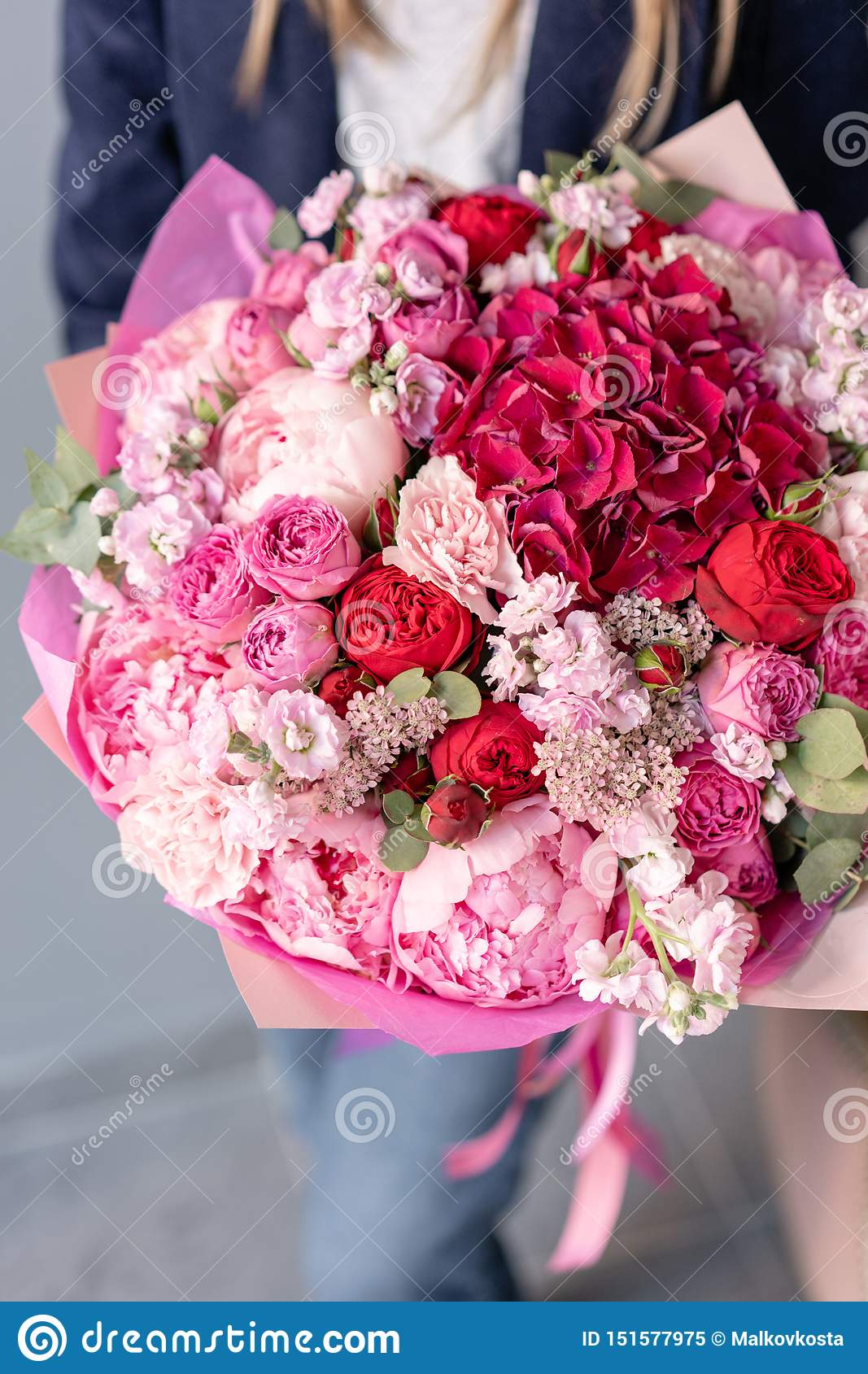 Pink Peonies And Red Hydrangea Beautiful Bouquet Of Mixed Flowers In Woman Hand Floral Shop Concept Handsome Fresh Stock Image Image Of Bloom Profession 151577975