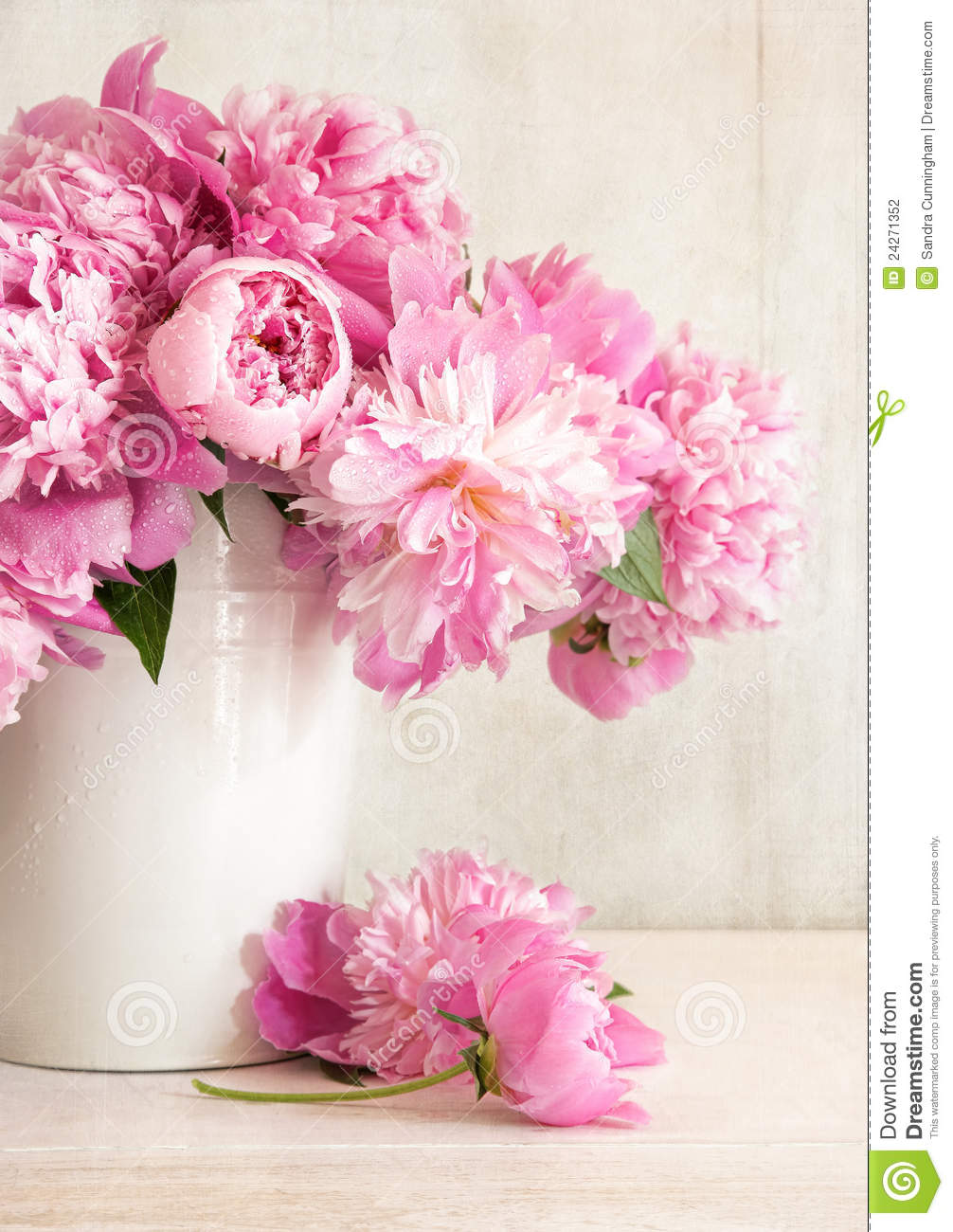 pink peonies in vase stock photography image 24271352. Black Bedroom Furniture Sets. Home Design Ideas