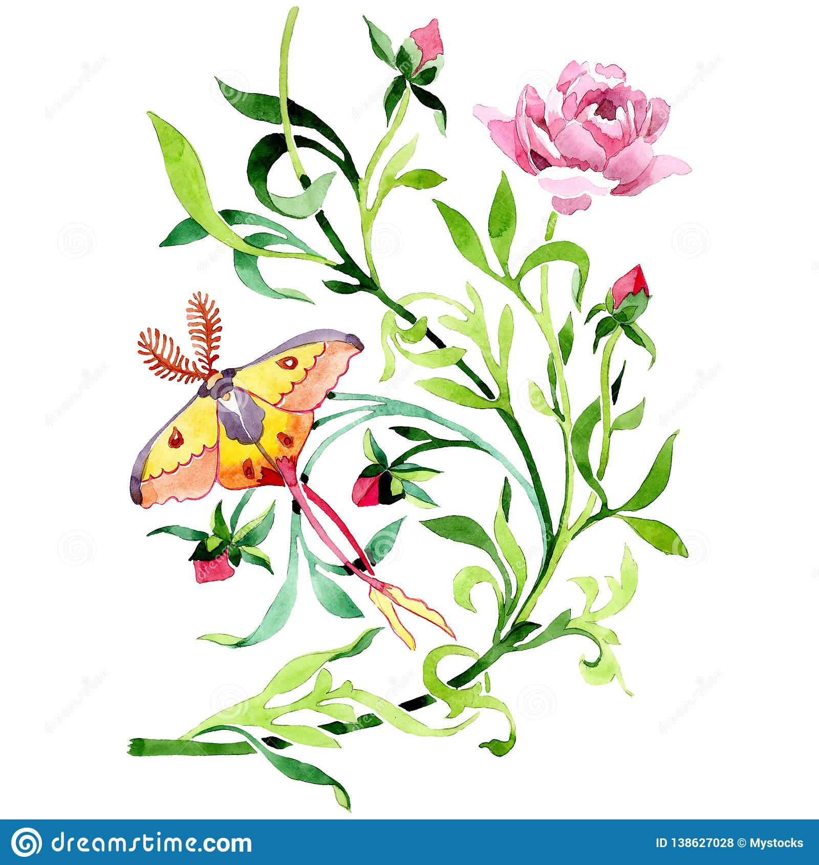 Pink peony with butterfly floral botanical flower. Watercolor background set. Isolated ornament illustration element.