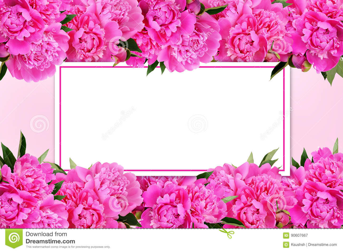 Pink peony flowers borders stock photo image 90607838 pink peony flowers borders and a card royalty free stock photography dhlflorist Images