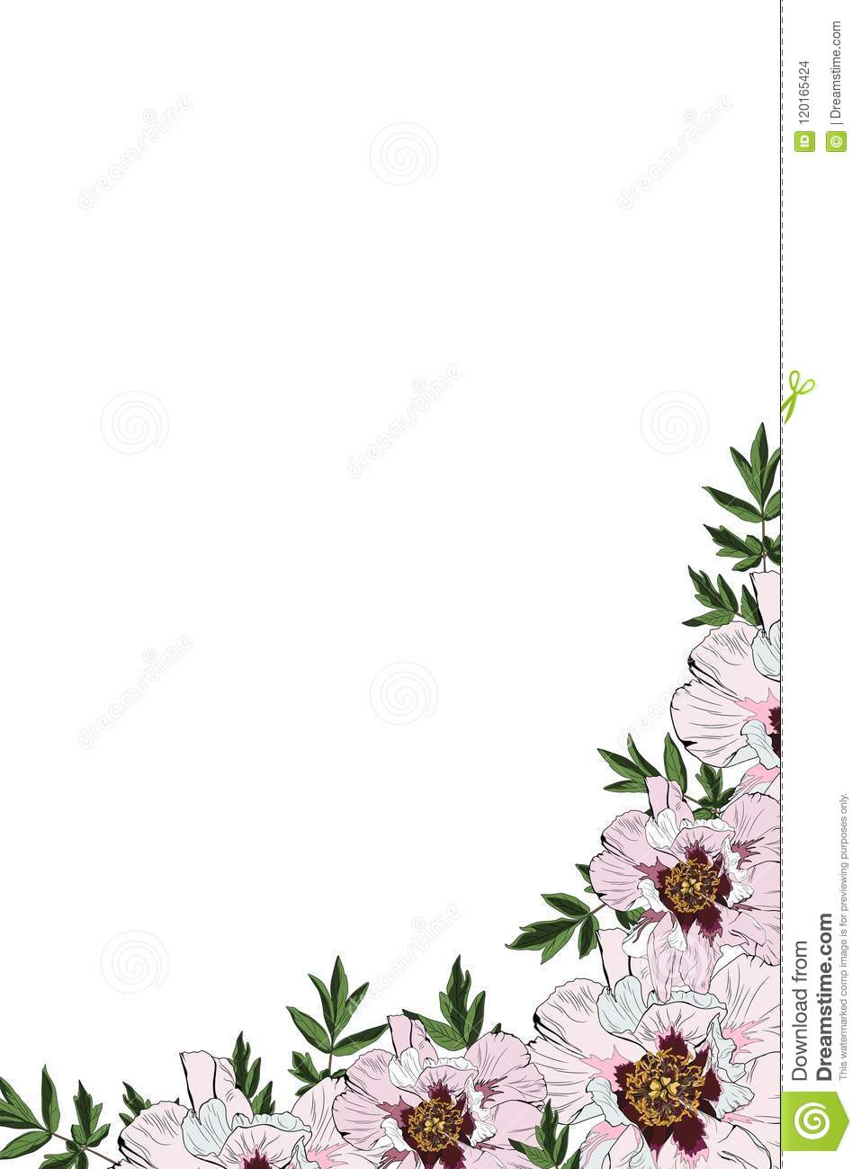 image about Printable Frame Template identify Crimson Peony Invitation Body Vector Spring Summer season Floral