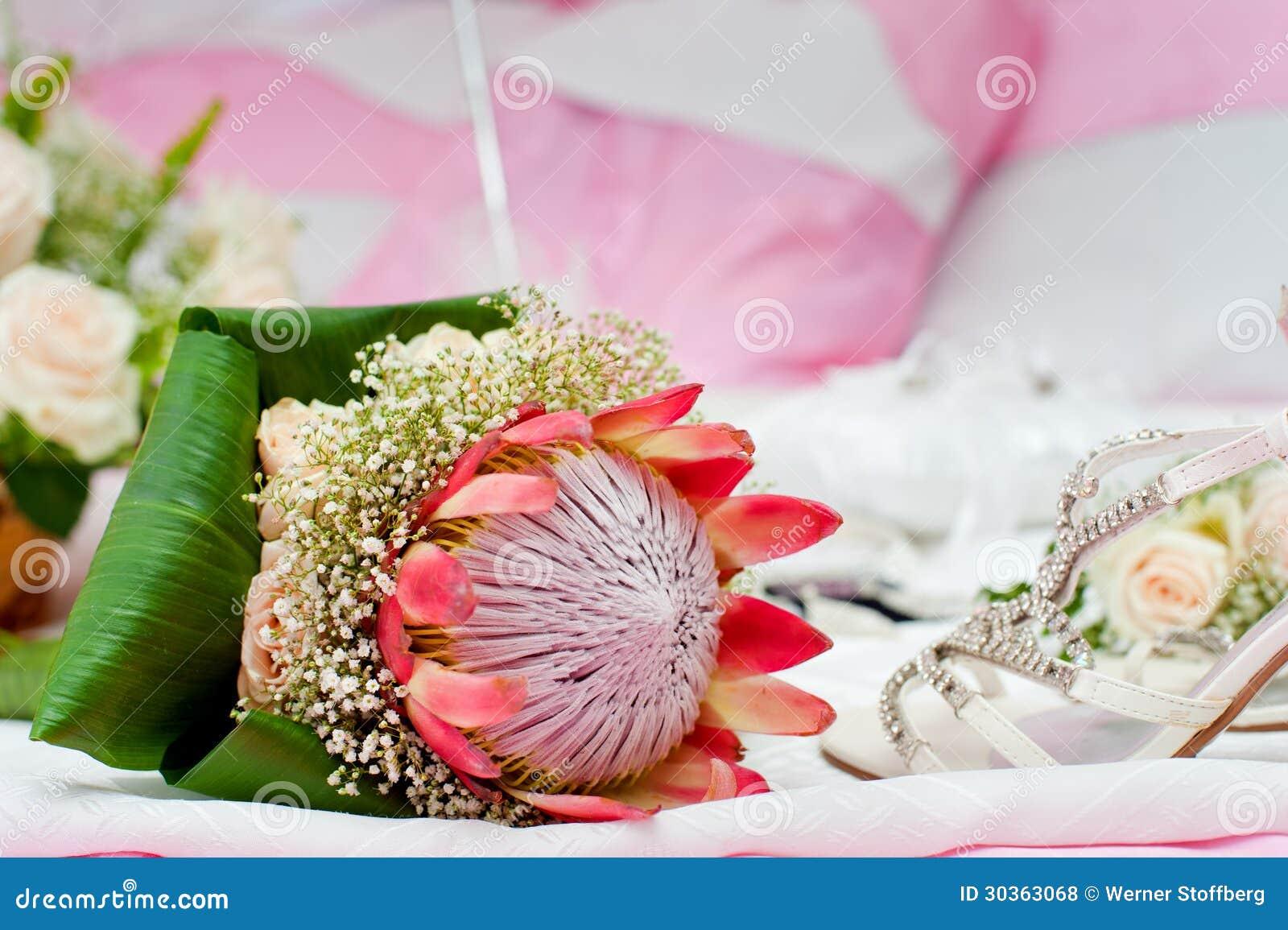 Protea bouquet stock image. Image of pink, exotic, genus - 66612961