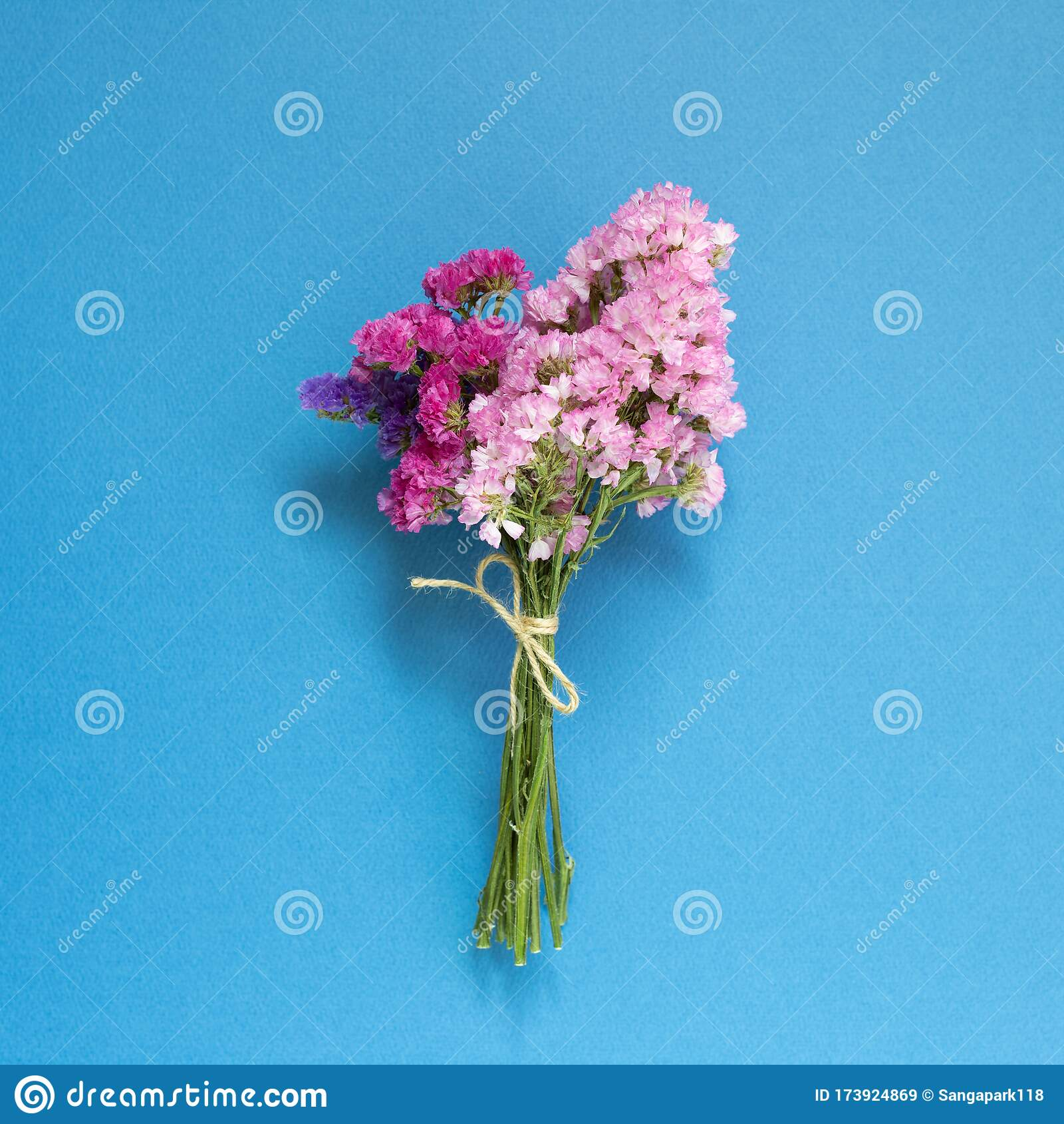 Pink Purple Statice Flowers Bouquet On Blue Background Stock Image Image Of Abstract Love 173924869
