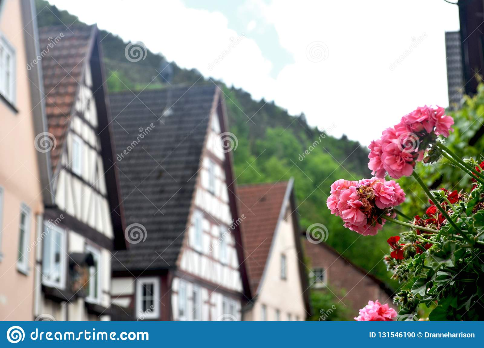 Pink and red geraniums frame a view of traditional Austrian houses. They have wooden lattice work, and sloping roofs. Behind them. Is a hill covered with green stock photo