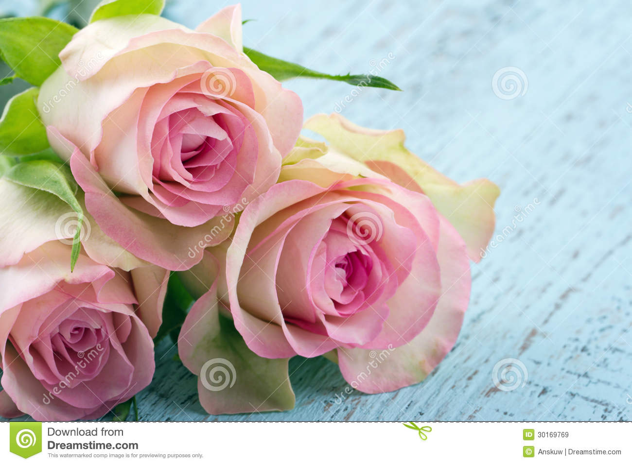 Light Pink Roses Background