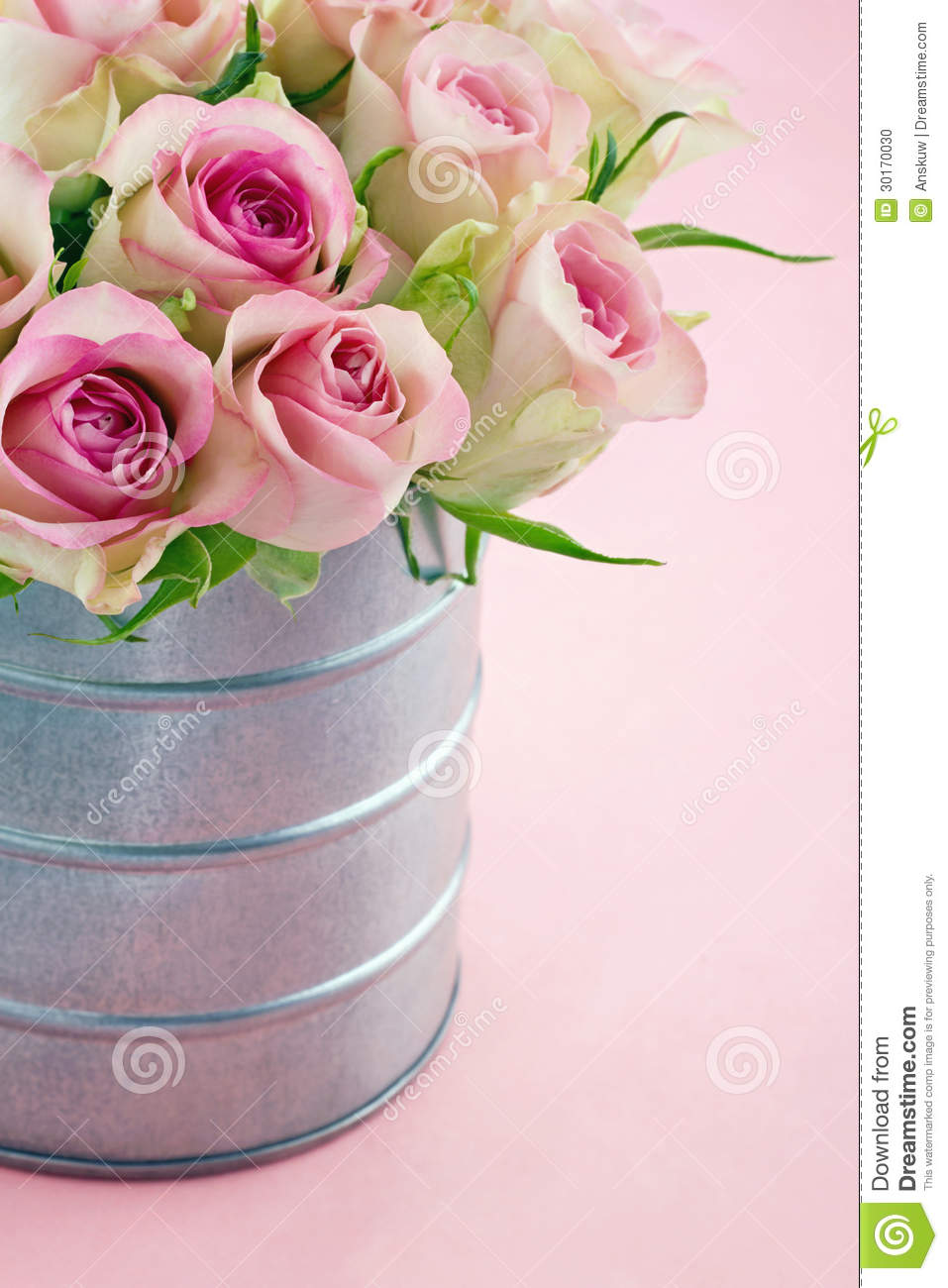 pink romantic roses on pastel color background stock photo image 30170030. Black Bedroom Furniture Sets. Home Design Ideas