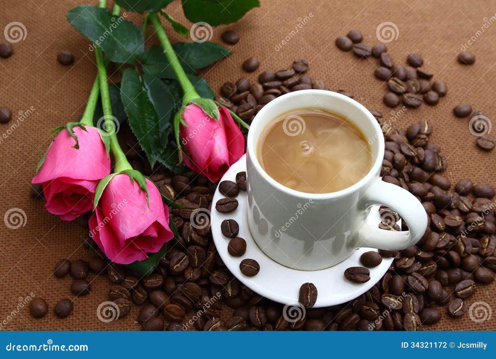 Pink Rose Black Coffe ...