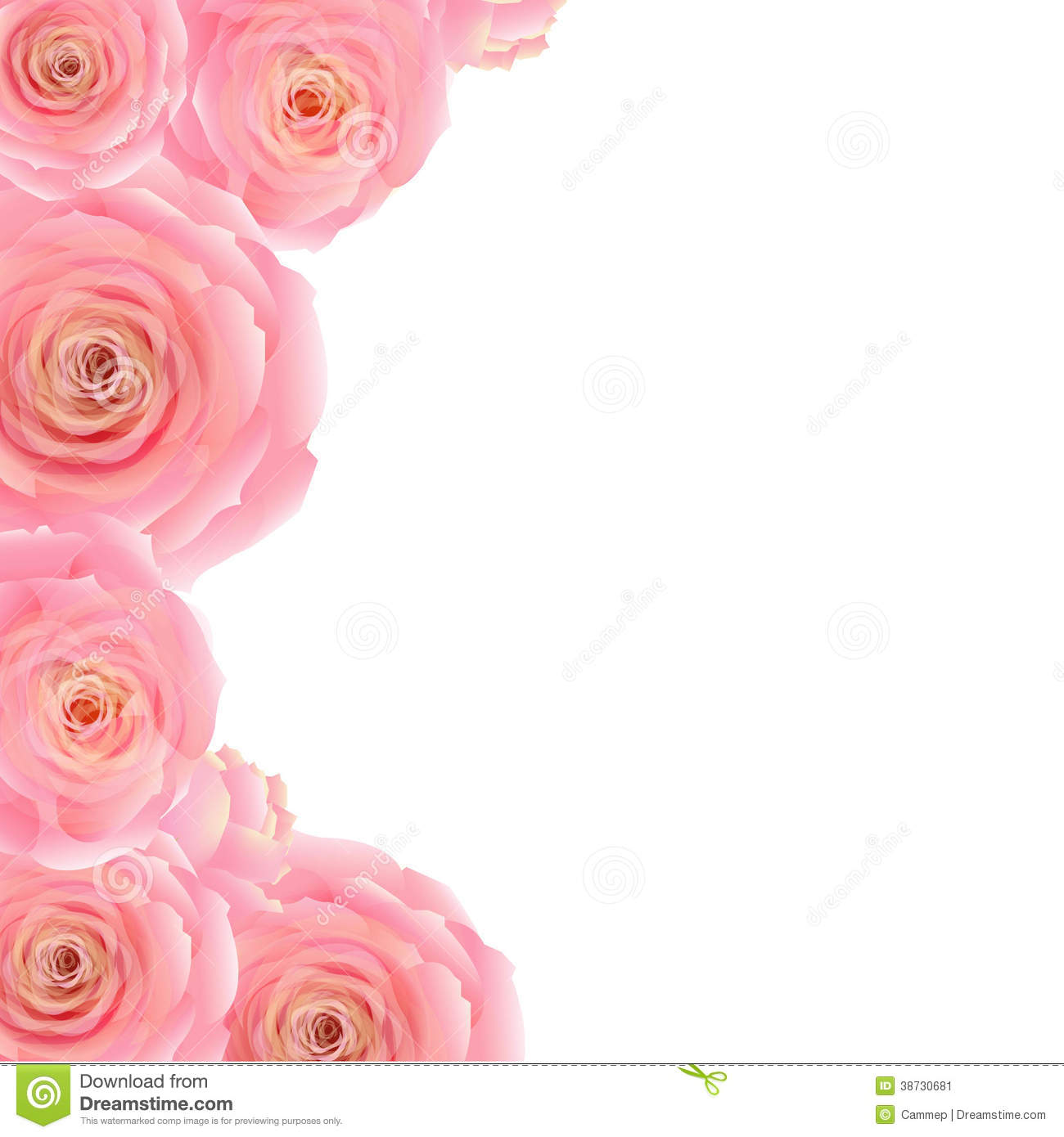 Pink Rose Border, With Gradient Mesh, Vector Illustration.