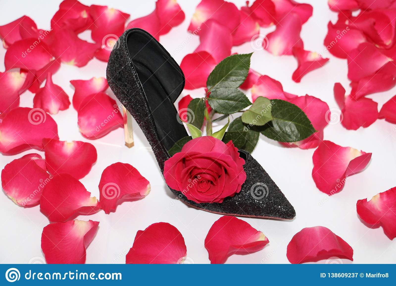 2fb7ae0884f Pink rose in a female shoe. Black shoes with high heels. Rose next to a black  shoe