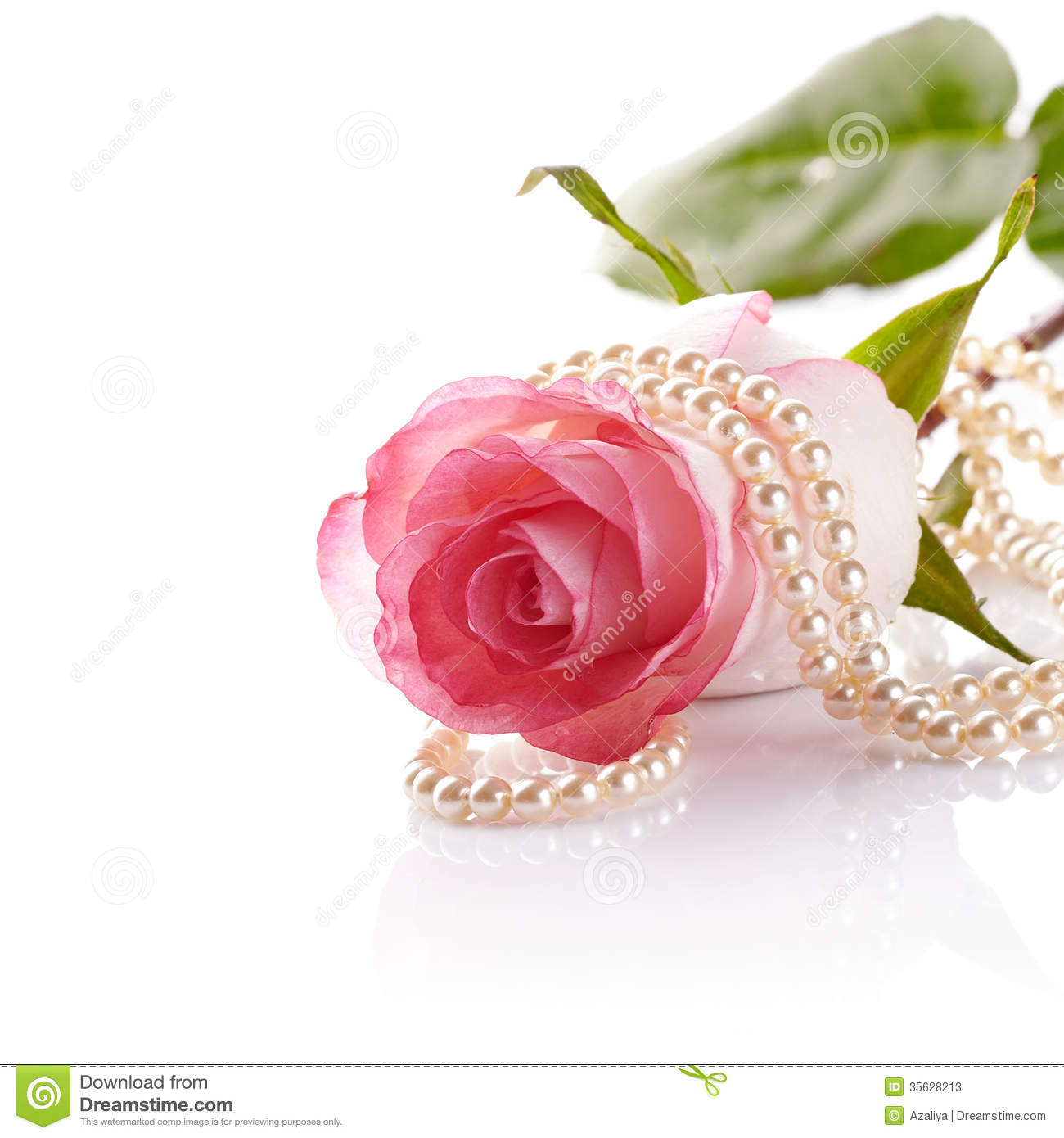Pink Rose And Pearl Beads Stock Image Image Of Concepts 35628213