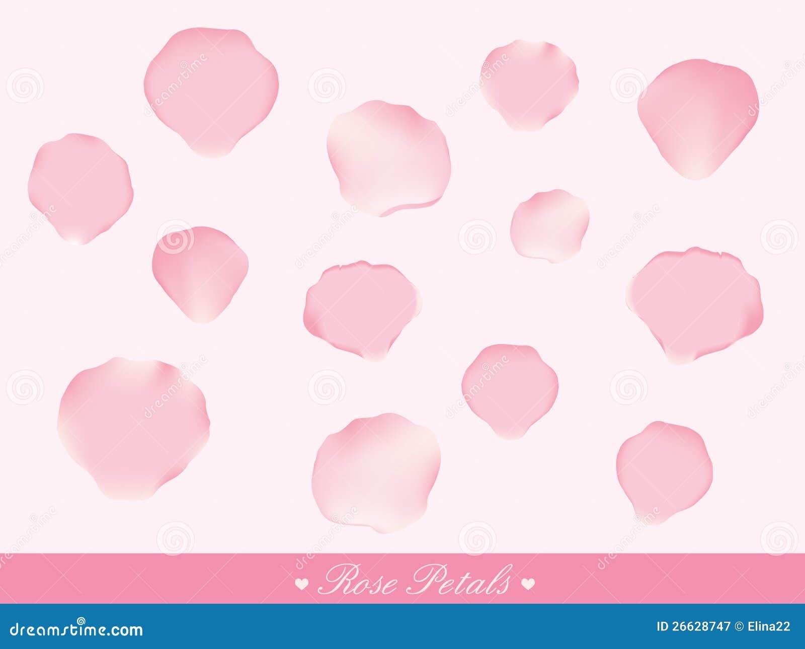 Pink Rose Petals Royalty Free Stock Photography - Image: 26628747