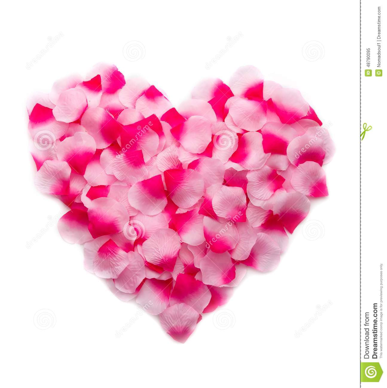 Compass rose stock images royalty free images amp vectors - Rose Petals For Valentines Day Hot Girls Wallpaper