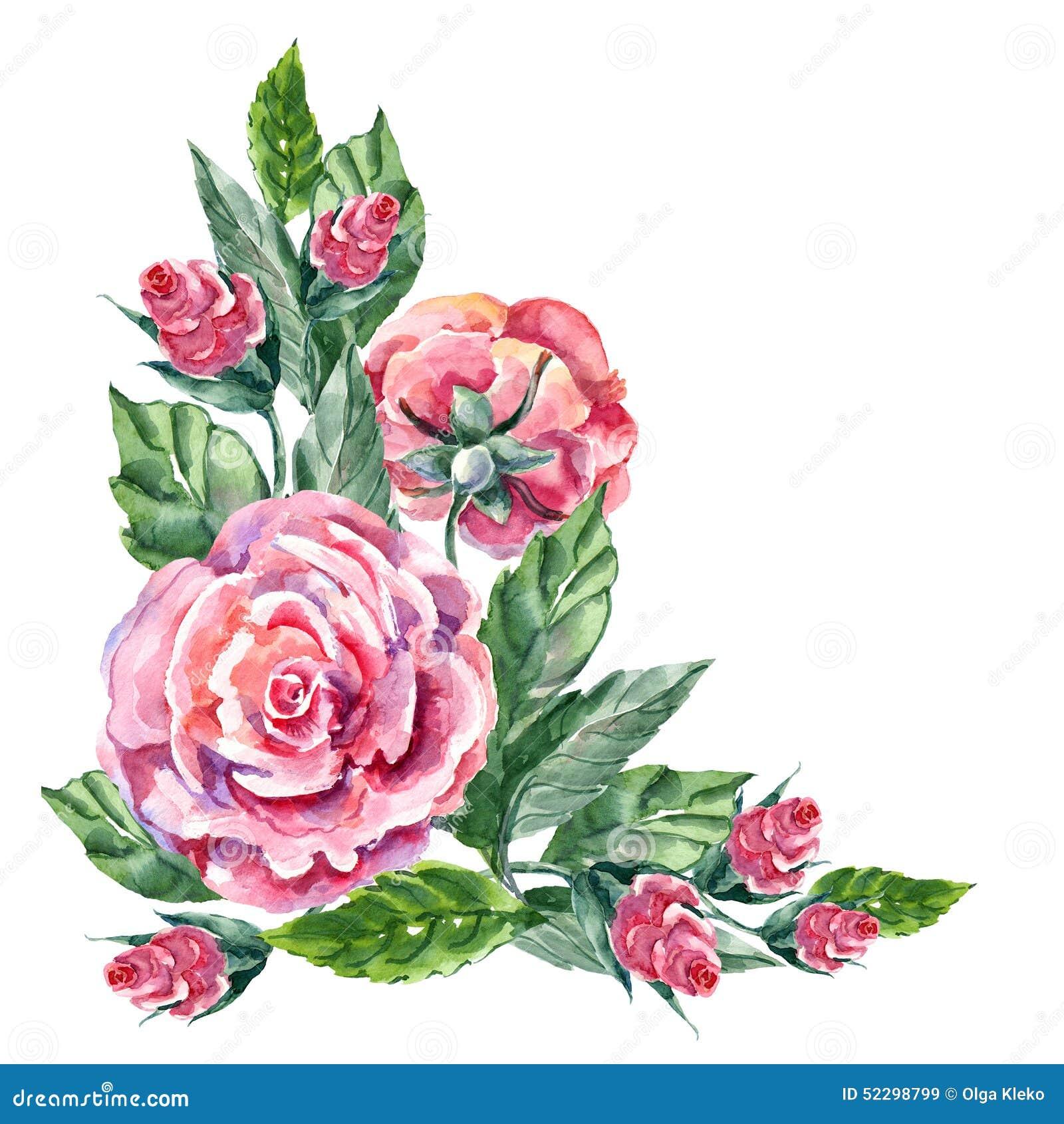 Pink Rose Watercolor Corner Stock Illustration Illustration Of
