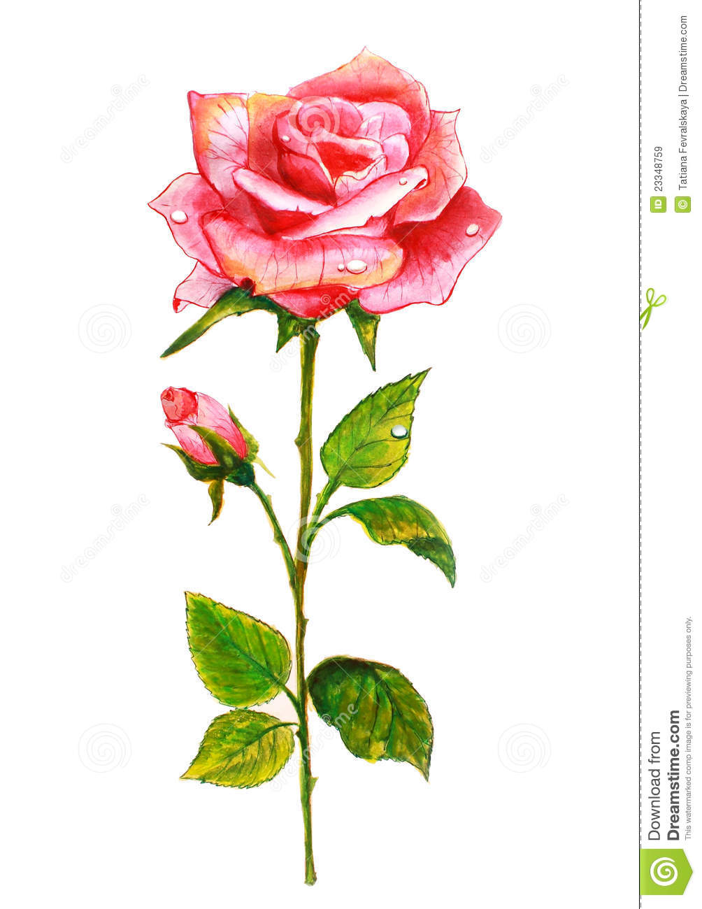 how to make rose painting
