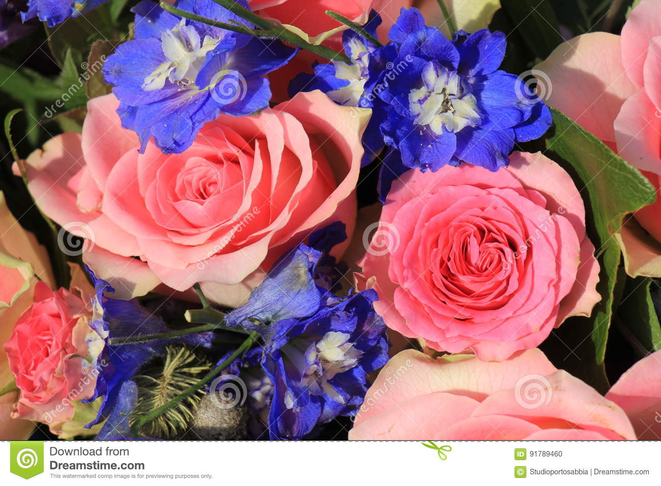 Pink Roses And Blue Larkspur Stock Photo - Image of flowers, blue ...