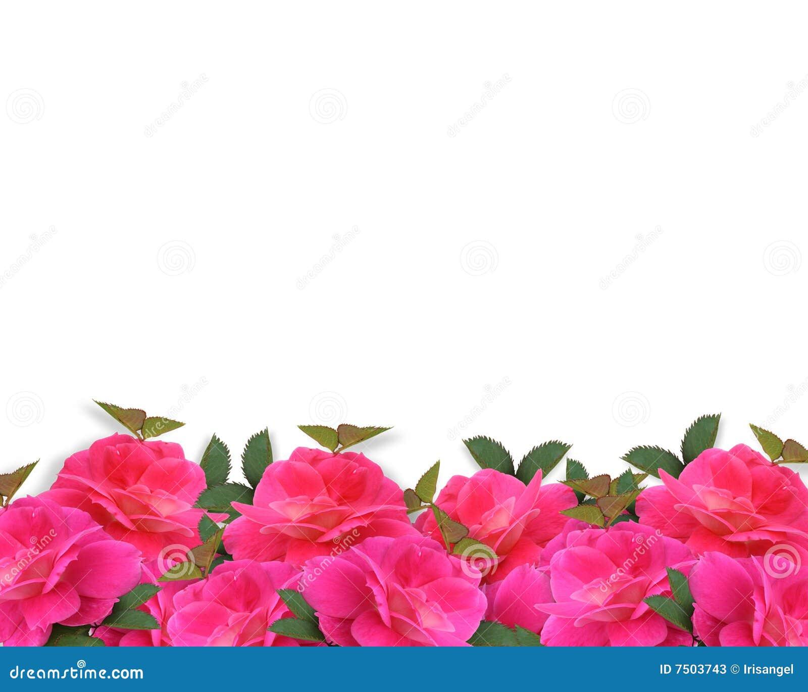 Pink Roses Border Background Stock Illustration ...