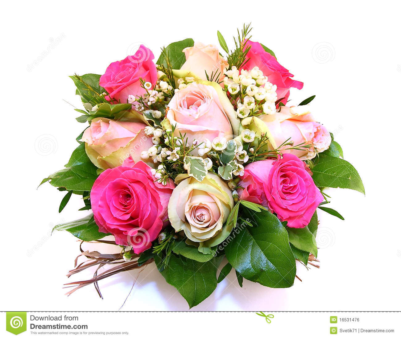 Pink Roses Bouquet Stock Photo Image Of Bouquet Pink