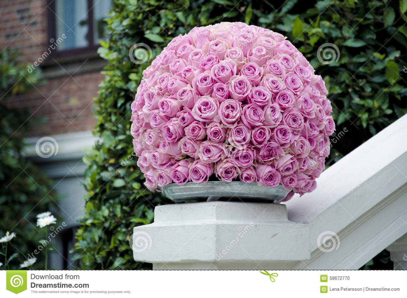 Pink roses centerpiece flower ball stock photo image