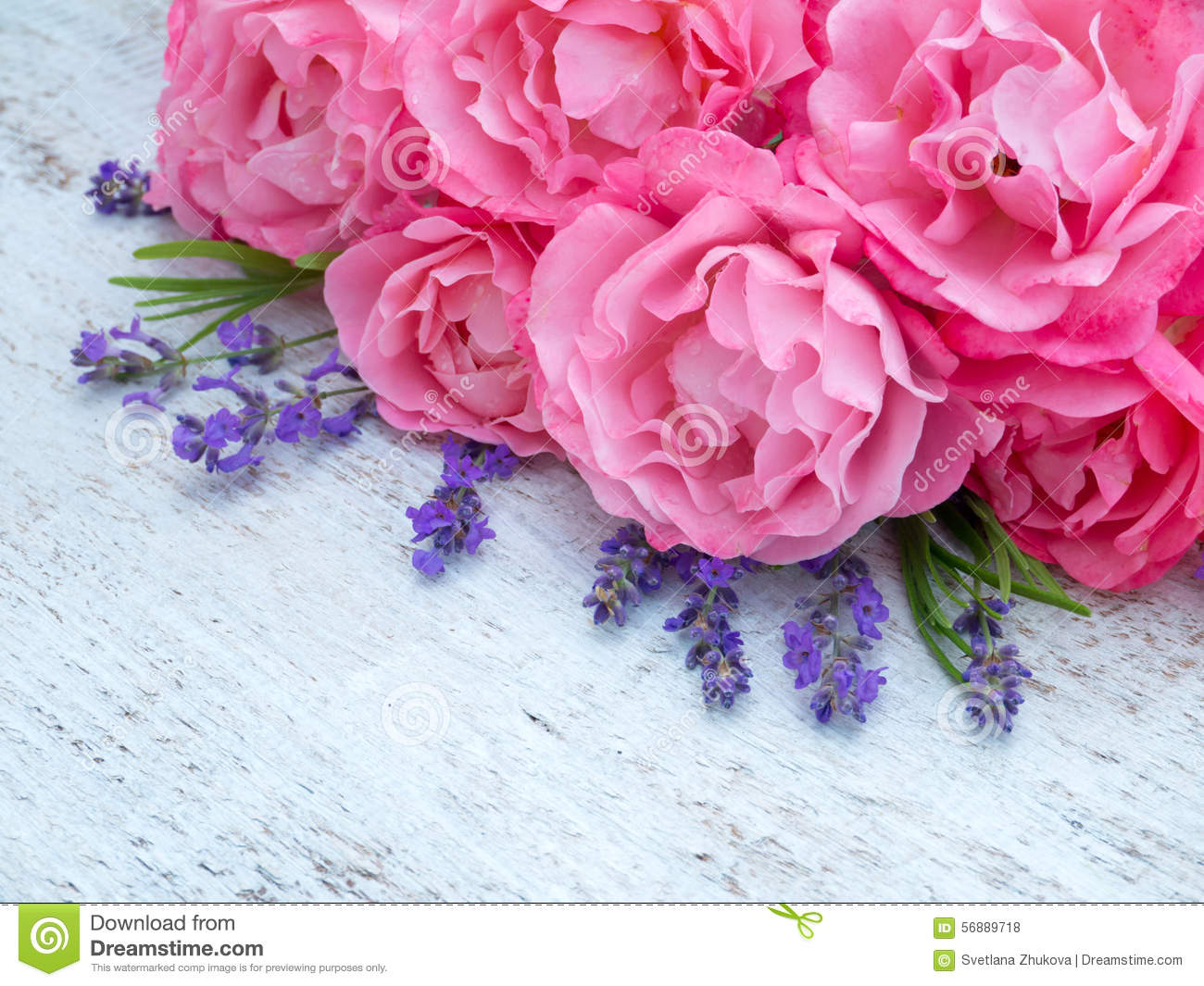 Pink roses and lavender bouquet on the white background