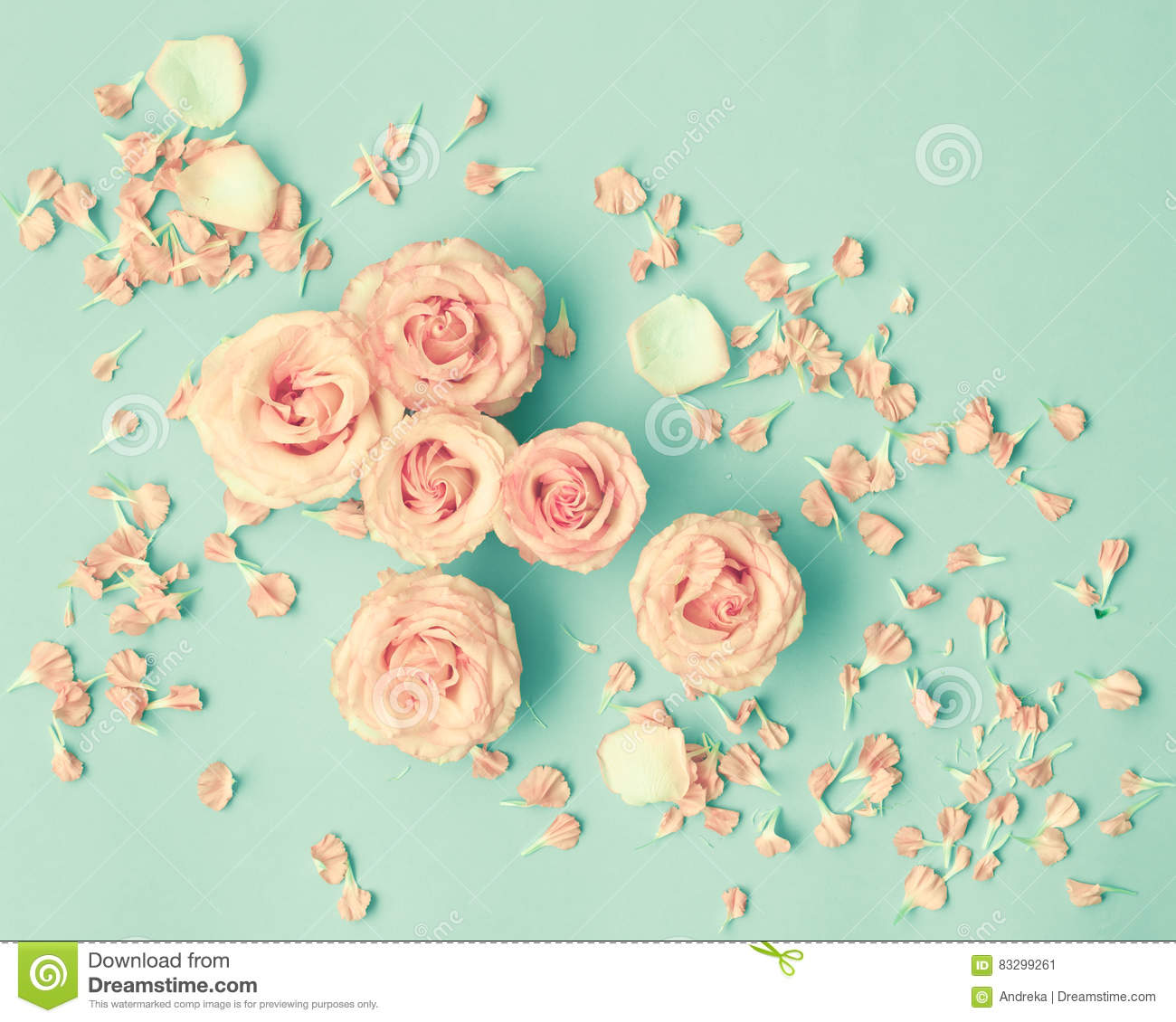 Pink Roses Over Mint Stock Image Image Of Morning Hipster 83299261