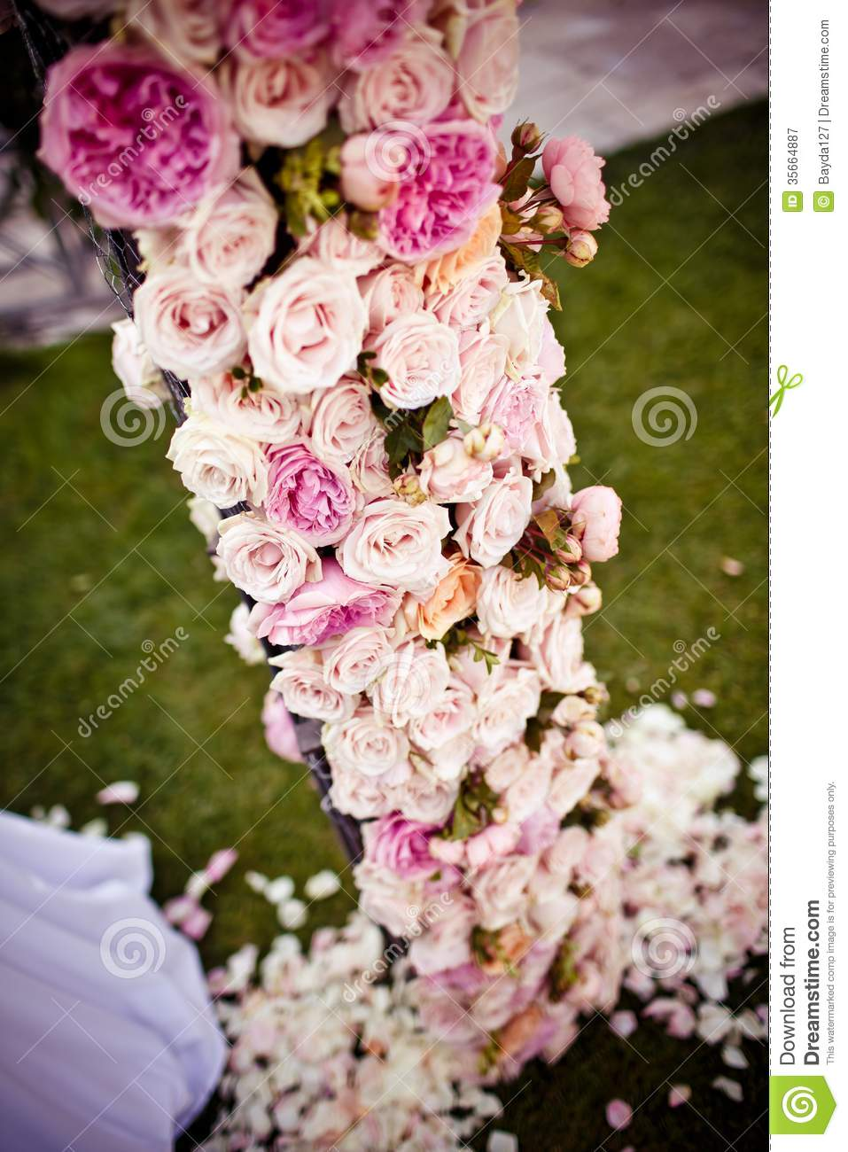 wedding flower arch pink roses and peonies wedding arch royalty free stock 9465