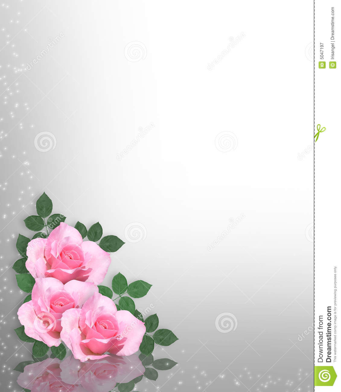 Pink Roses Template Royalty Free Stock Photography Image