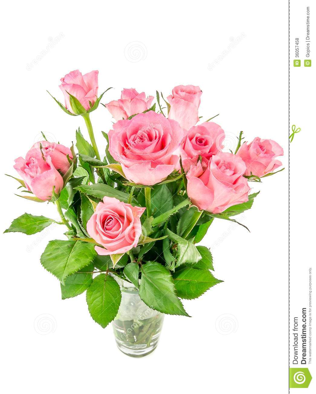 Pink Roses In A Vase Stock Photo Image Of Floral Pink 36057458