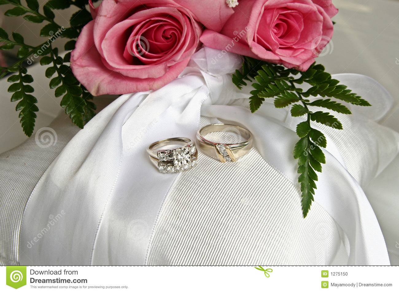 Pink Roses And Wedding Rings Stock Photo Image of bride silk 1275150