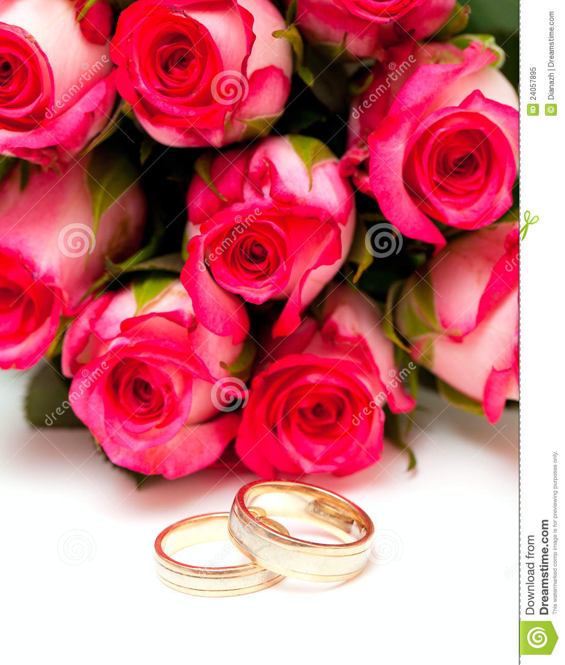 Pink Roses And Wedding Rings Isolated On White