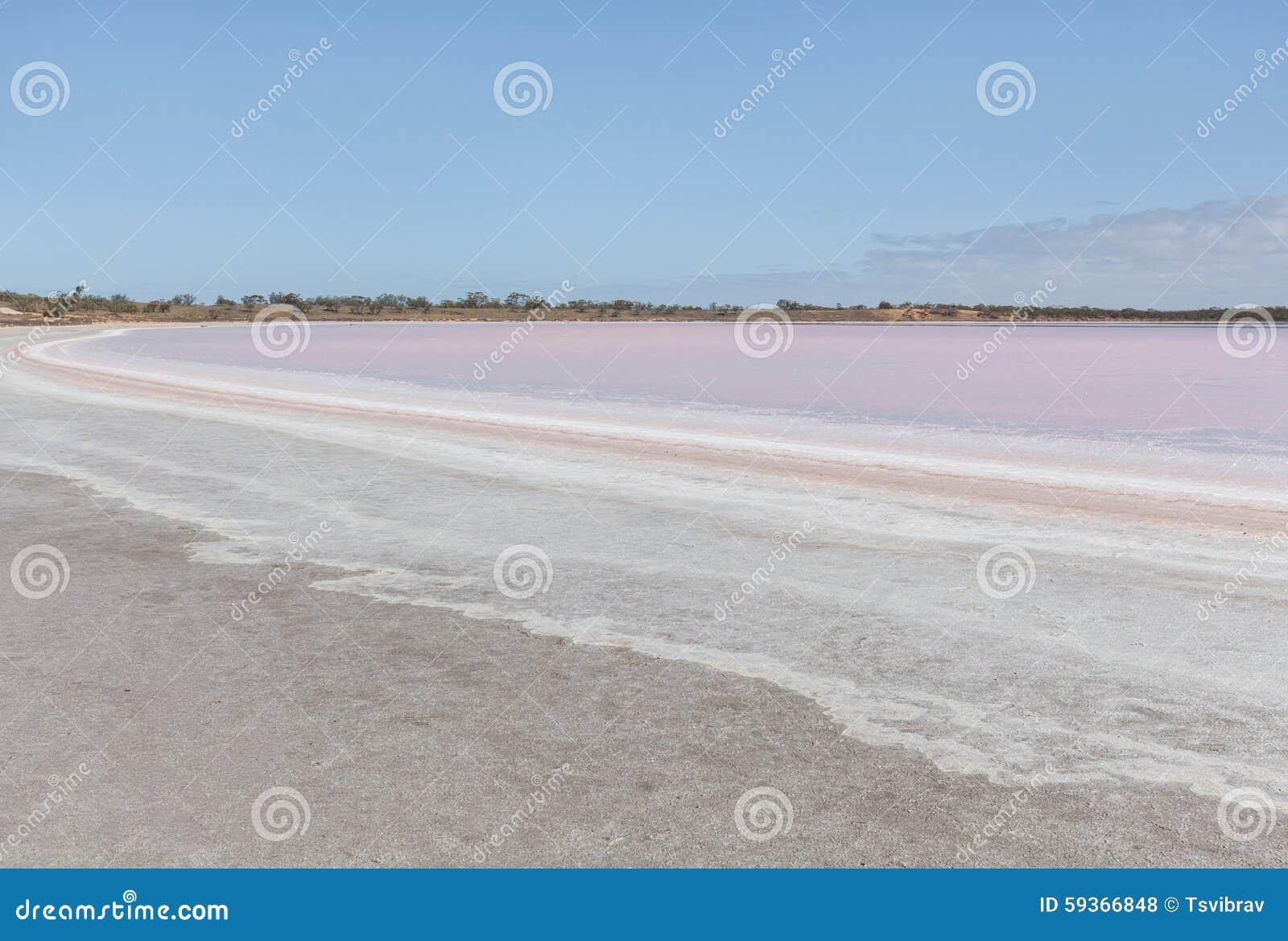 Pink Salt Lake Becking Landscape