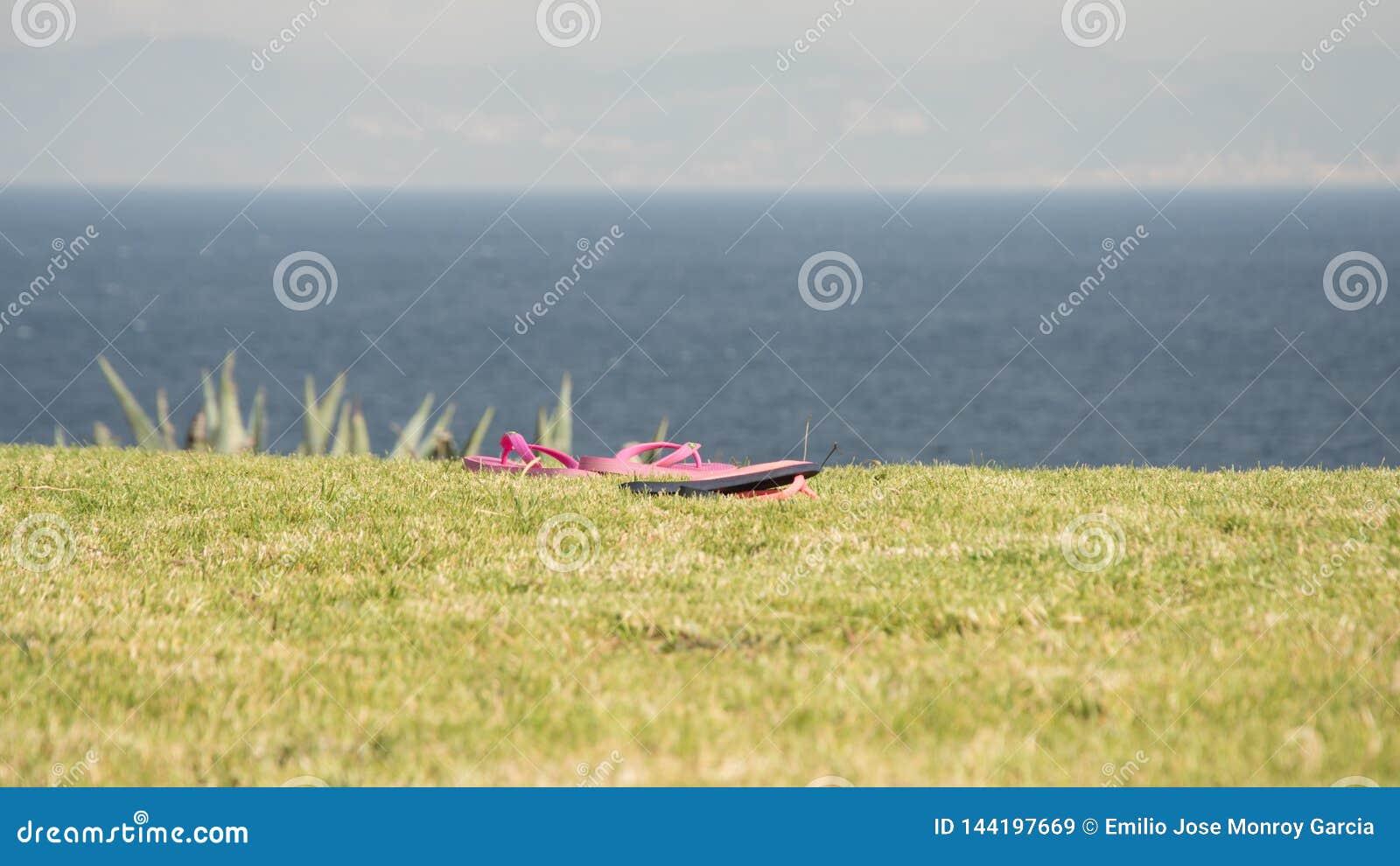 Pink sandals over grass