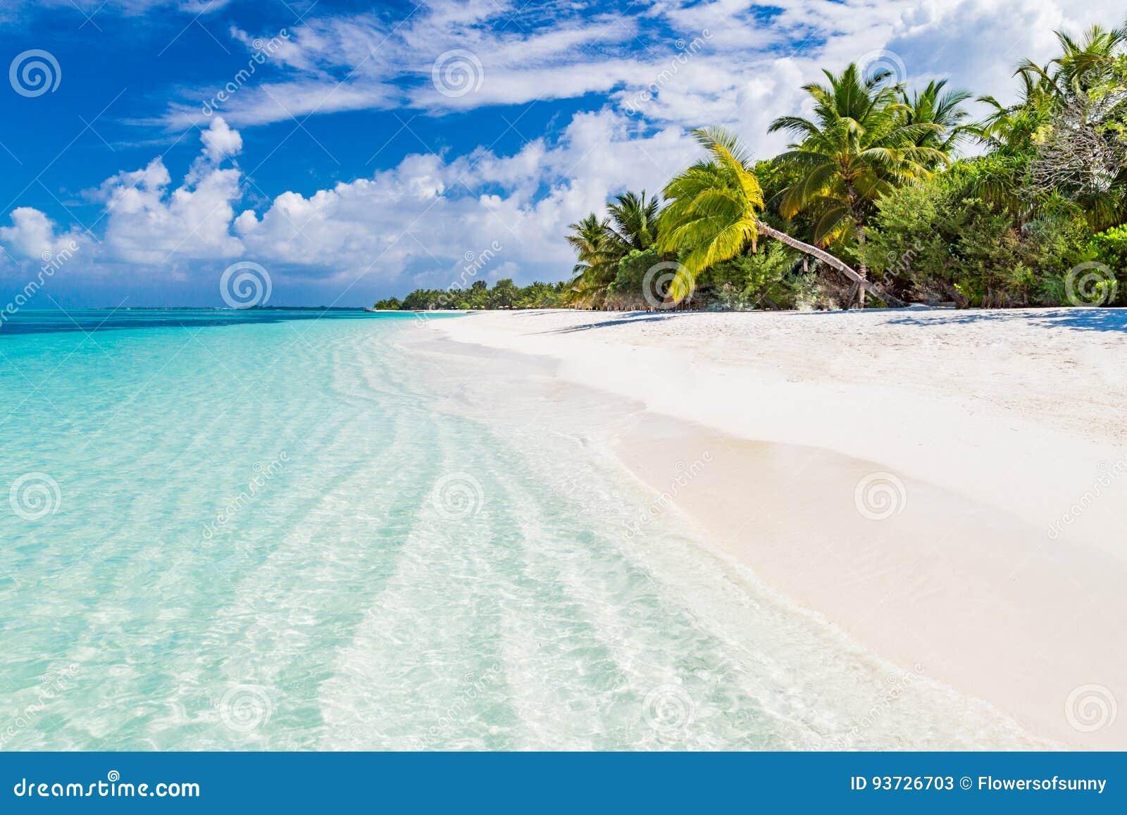 Μαϊάμι παραλία dating σκηνή