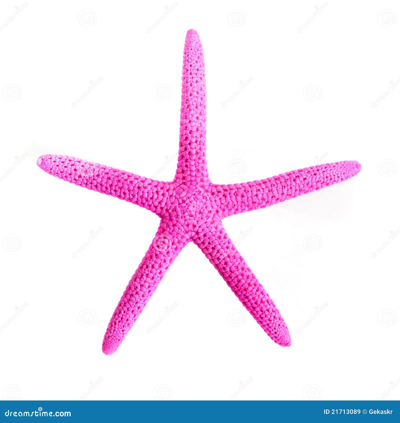 Pink Starfish Clipart for Pink Starfish Clipart  53kxo