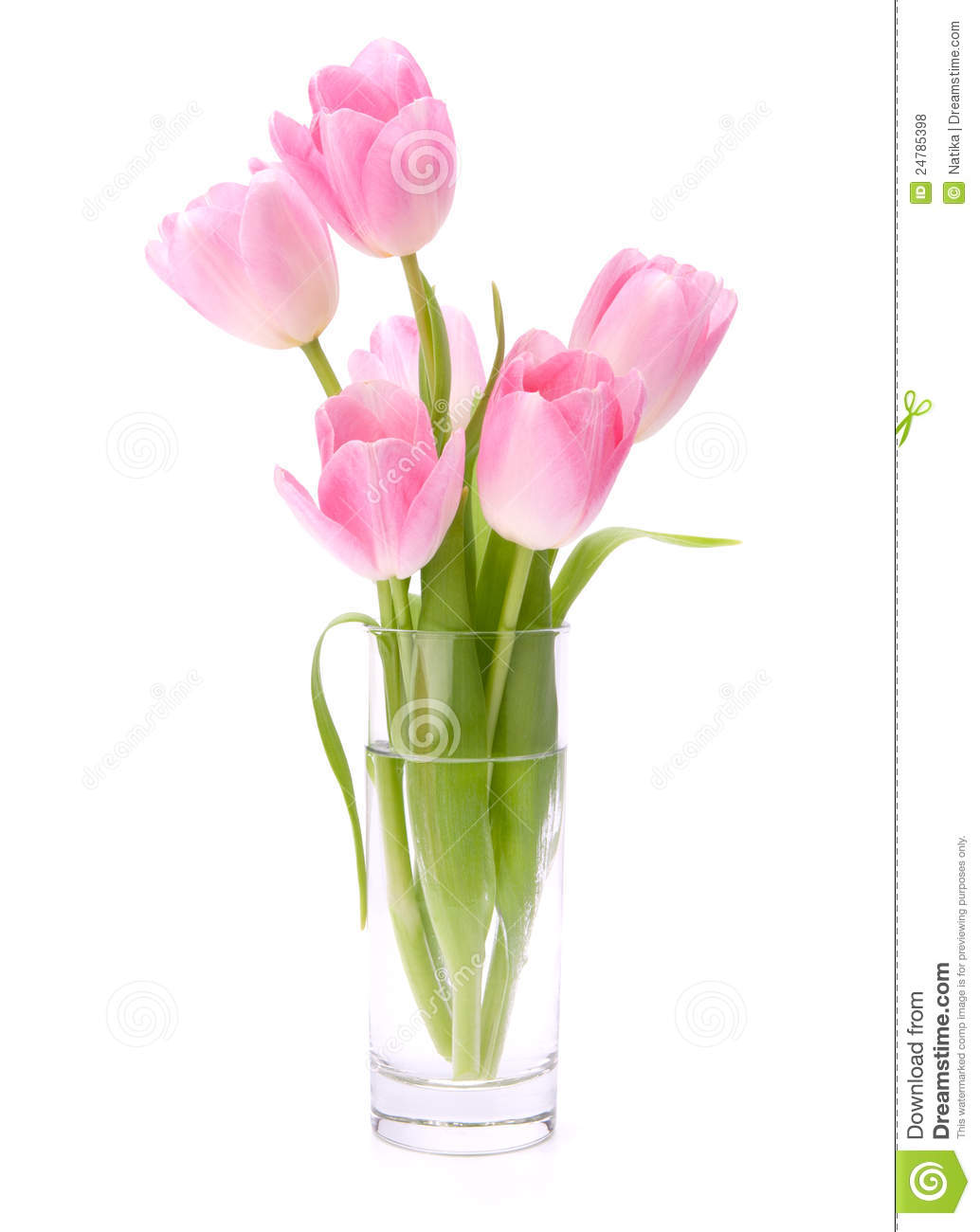 Pink Tulips Bouquet In Vase Stock Photo Image 24785398