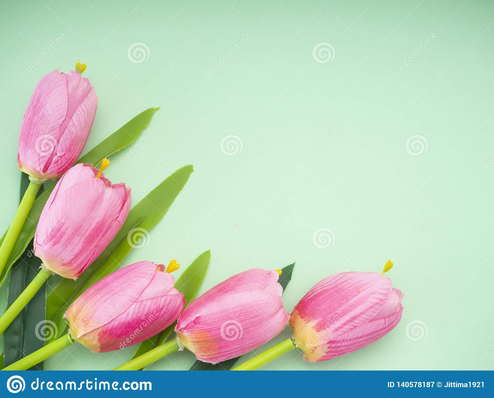 Pink tulips green paper background