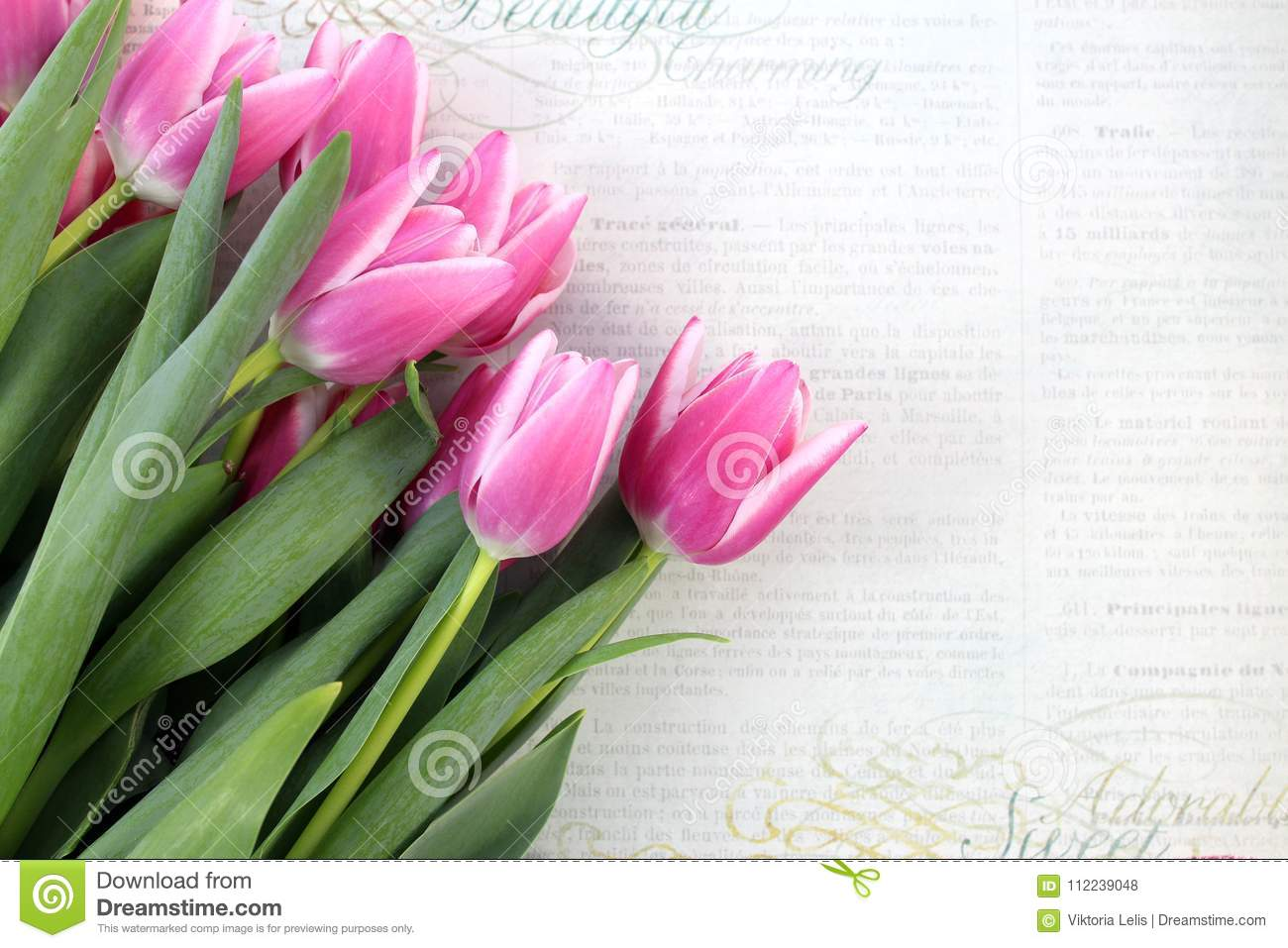 Pink Tulips On Vintage Background Paper Newspaper Spring Flowers A Romantic Floral With Copy Space