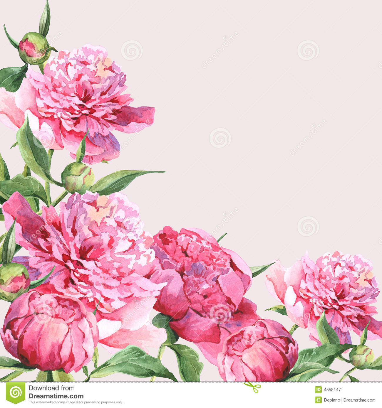 Vintage greeting card stock vector illustration of grubby 13215287 pink watercolor peonies vintage greeting card stock image kristyandbryce Choice Image