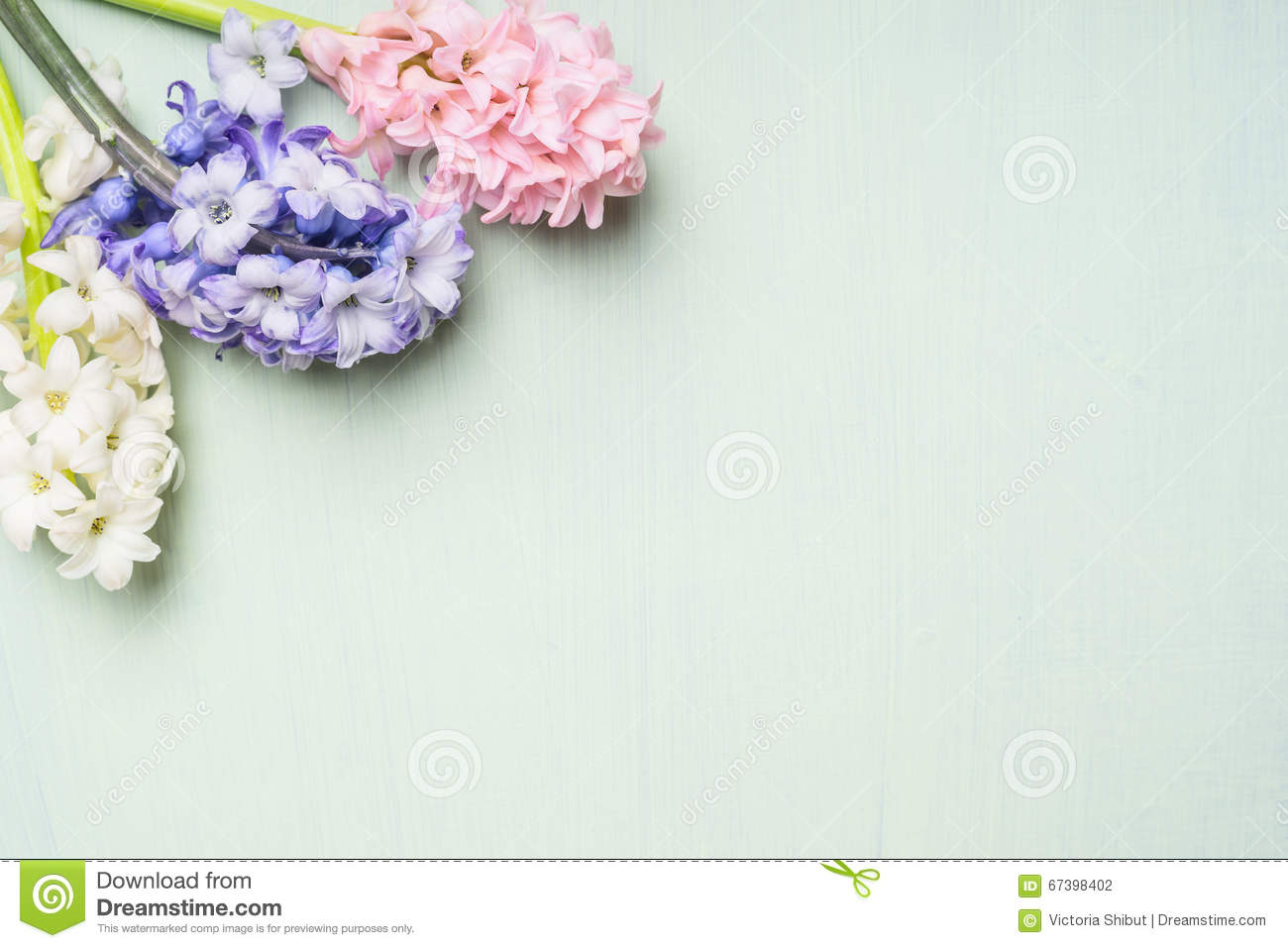 Pinkwhite And Blue Hyacinths Flowers Bunch On Light Shabby Chic Background Top View