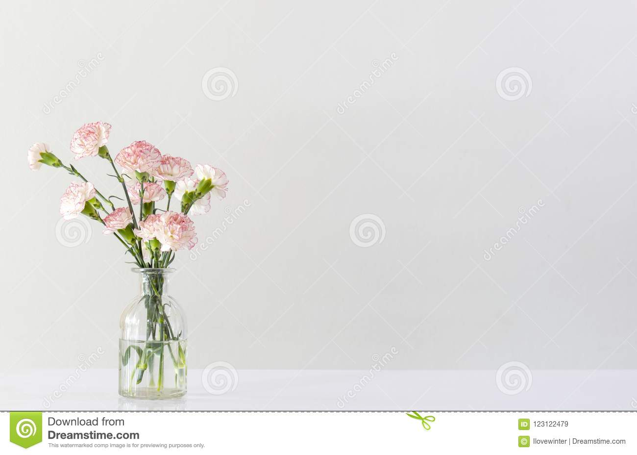 Pink And White Carnation Flowers In Glass Vase Stock Image Image
