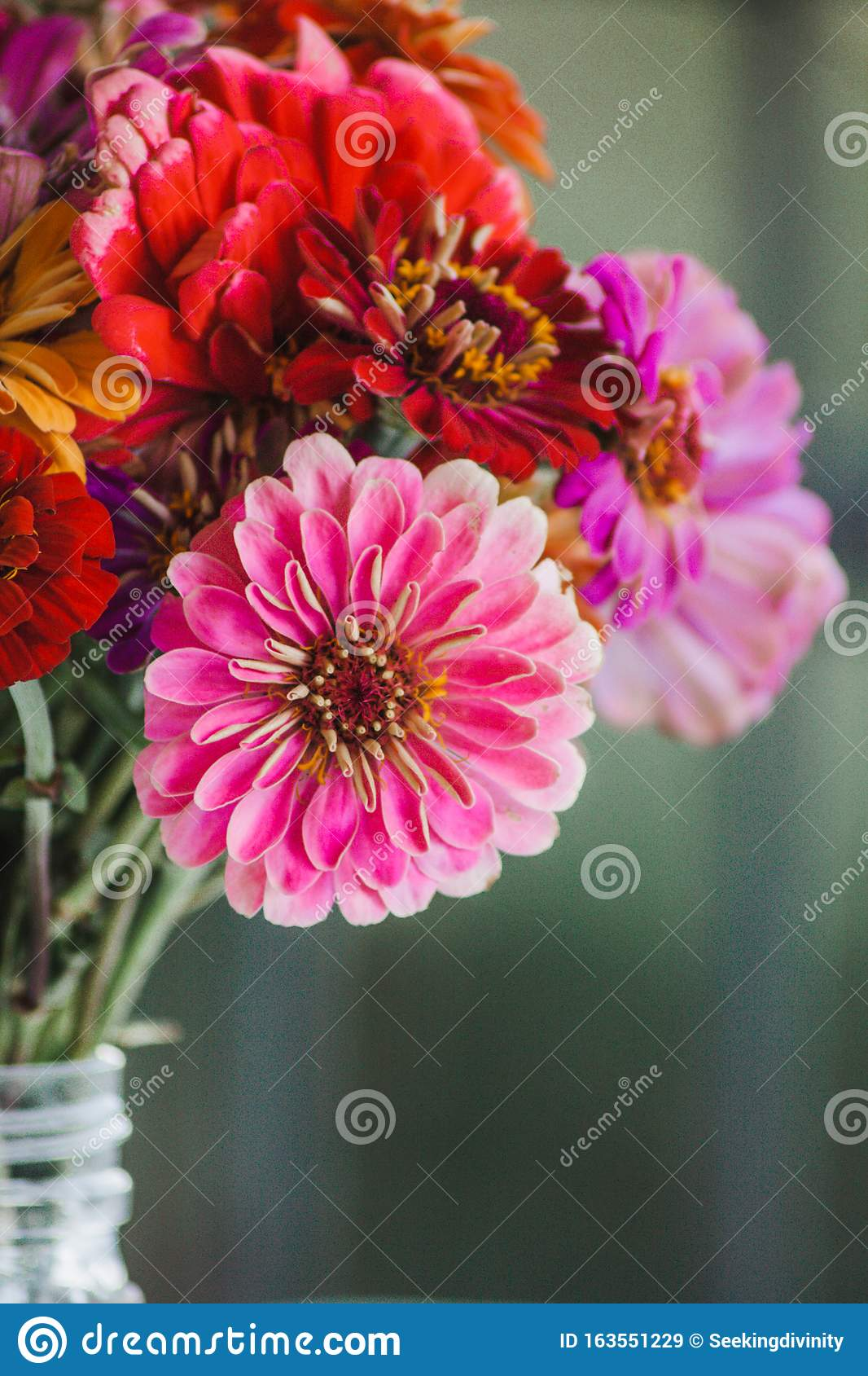 Pink Wildflower In A Bouquet Stock Image Image Of Bouquet Pink 163551229