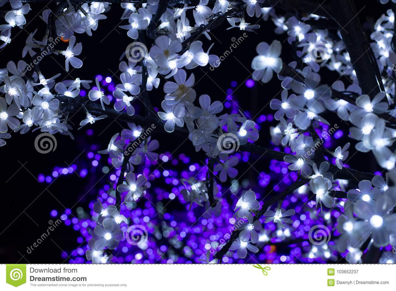 Pink and white flower lights christmas lights stock image image of pink and white flower lights christmas lights mightylinksfo