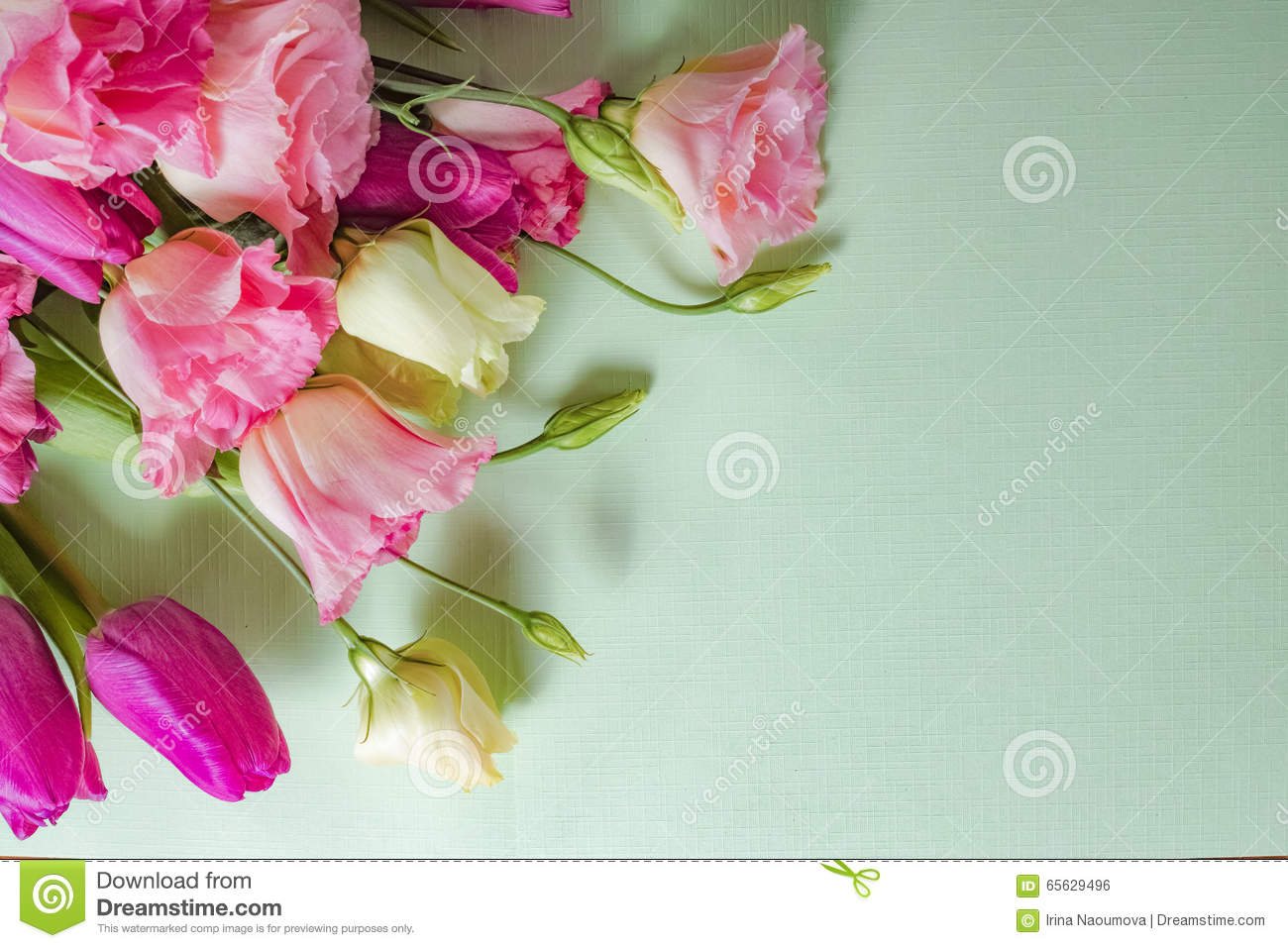 Pink And White Flowers On Light Green Background Layout With Free