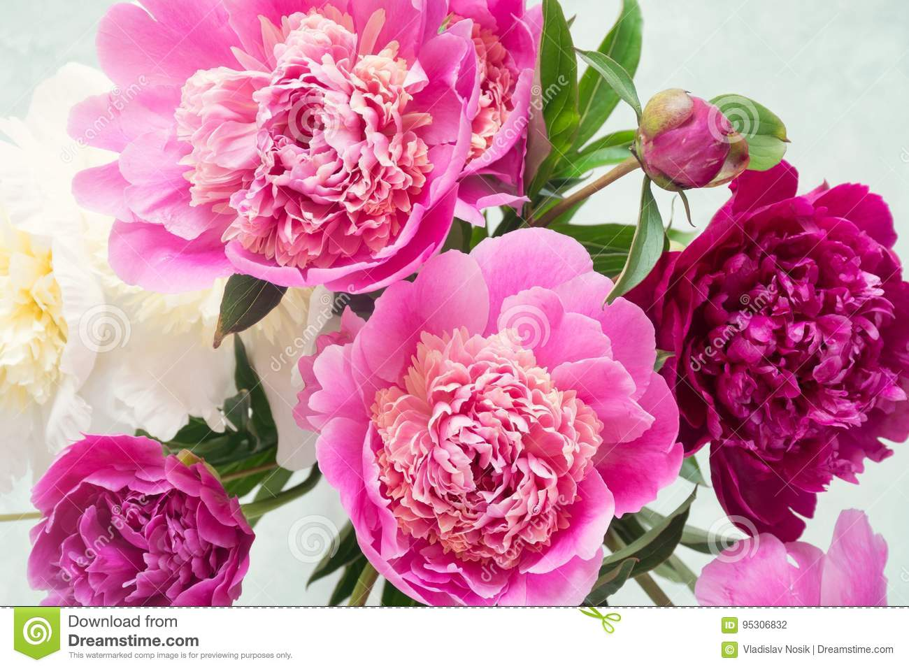 Pink And White Peonies Bouquet On Bright Background Stock Photo Image Of Flat Mock 95306832