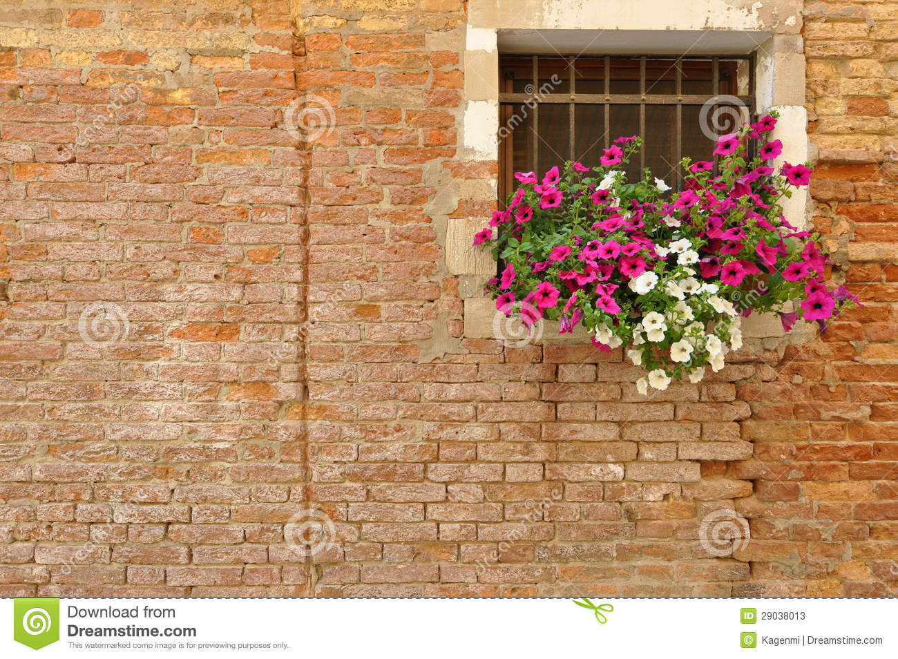Pink and white petunia flowers on the windowsill of a brick Italian home
